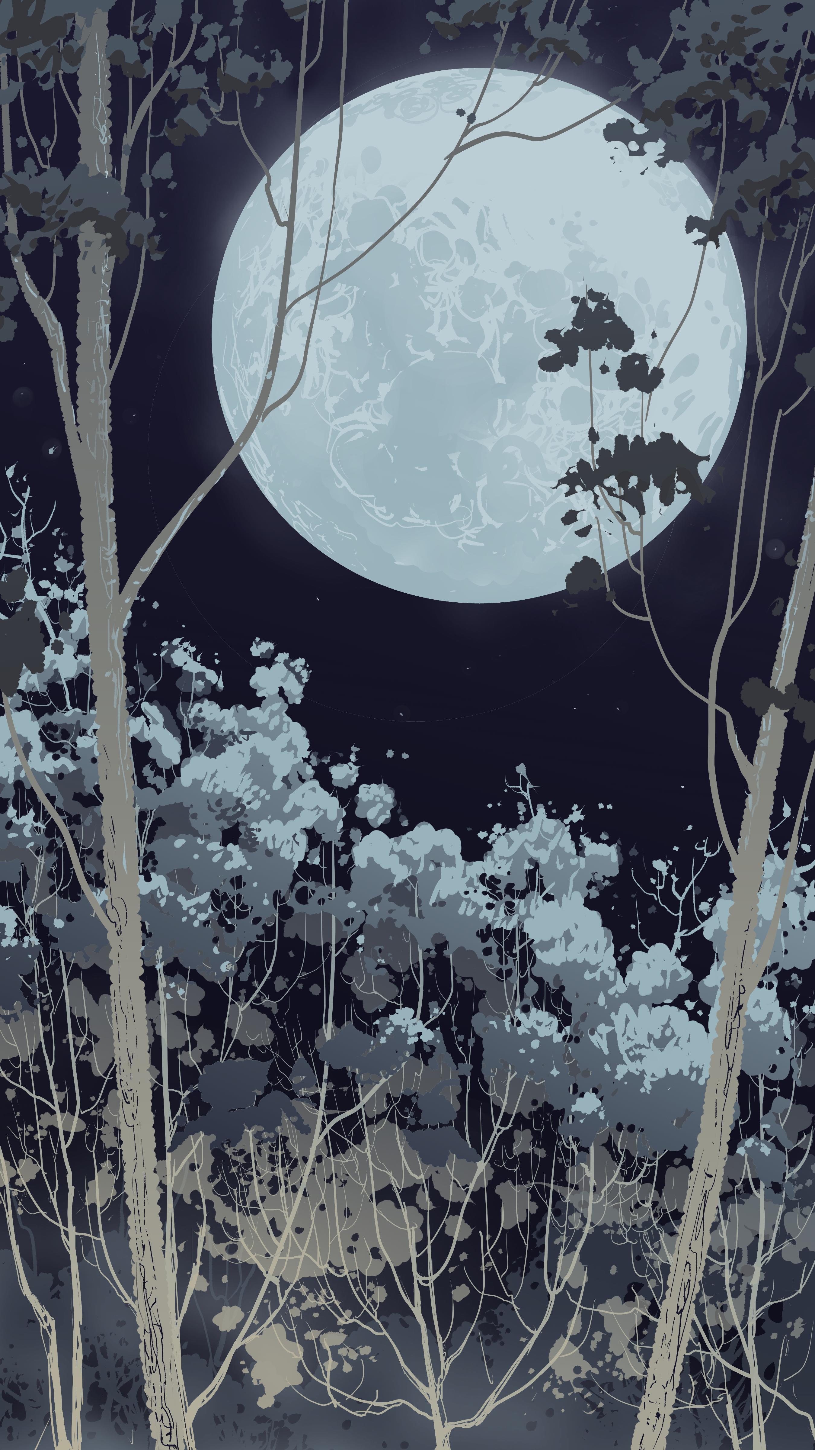 127787 Hintergrundbild herunterladen Vektor, Übernachtung, Wald, Vollmond - Bildschirmschoner und Bilder kostenlos