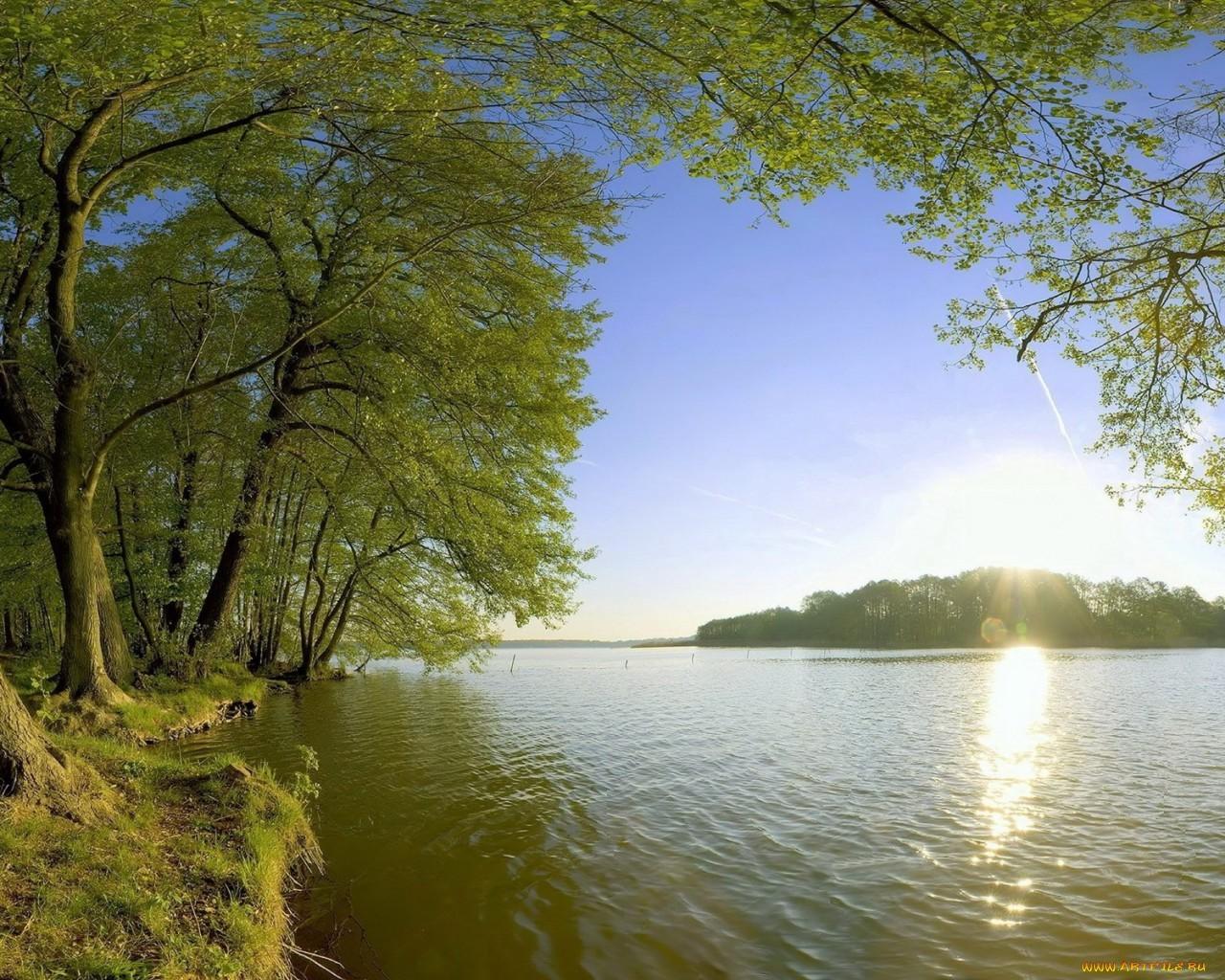 Скачать картинку Река, Деревья, Пейзаж в телефон бесплатно.