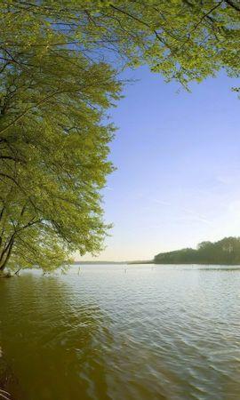 21238 скачать обои Пейзаж, Река, Деревья - заставки и картинки бесплатно