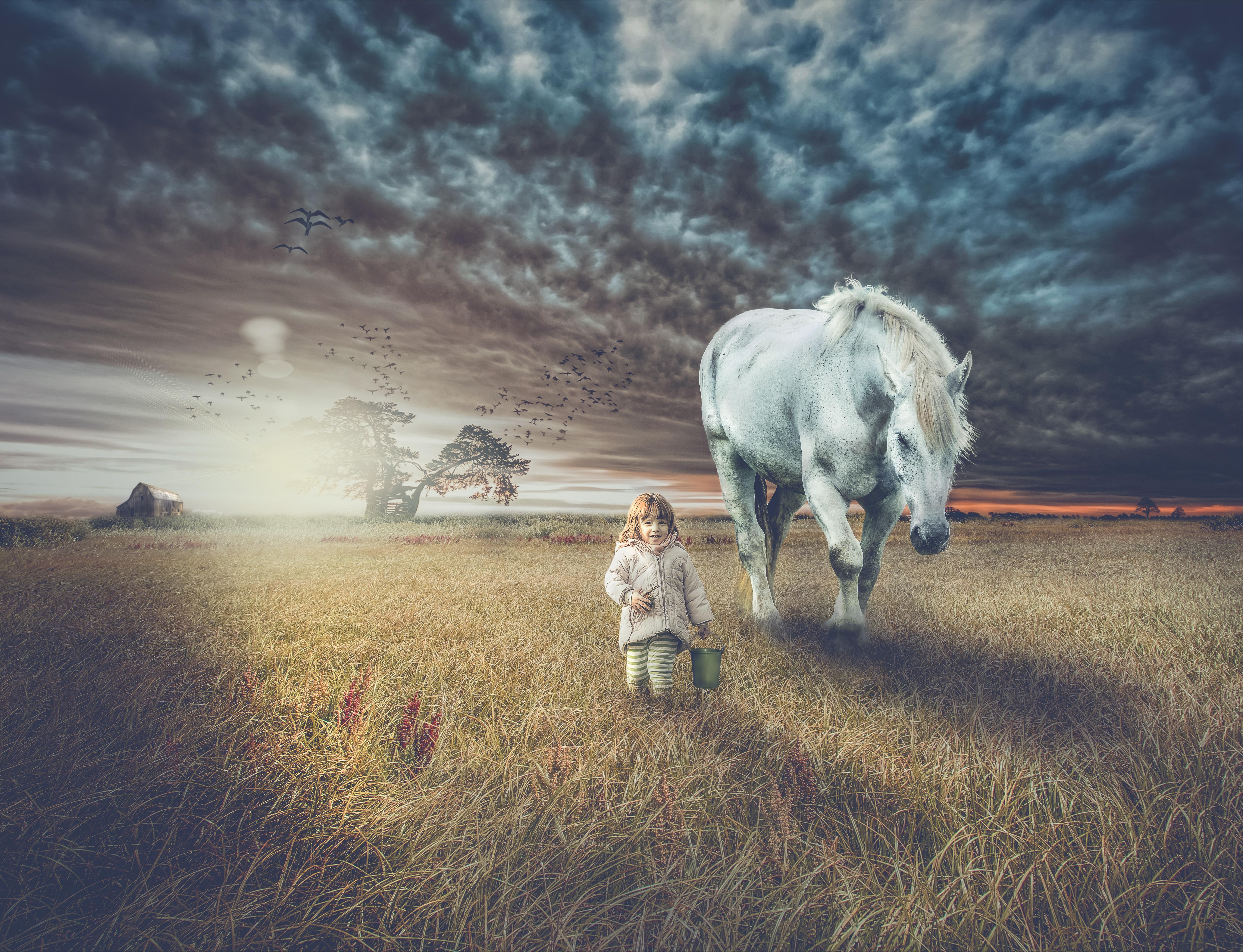 97611 скачать обои Разное, Поле, Прогулка, Фотошоп, Ребенок, Лошадь - заставки и картинки бесплатно
