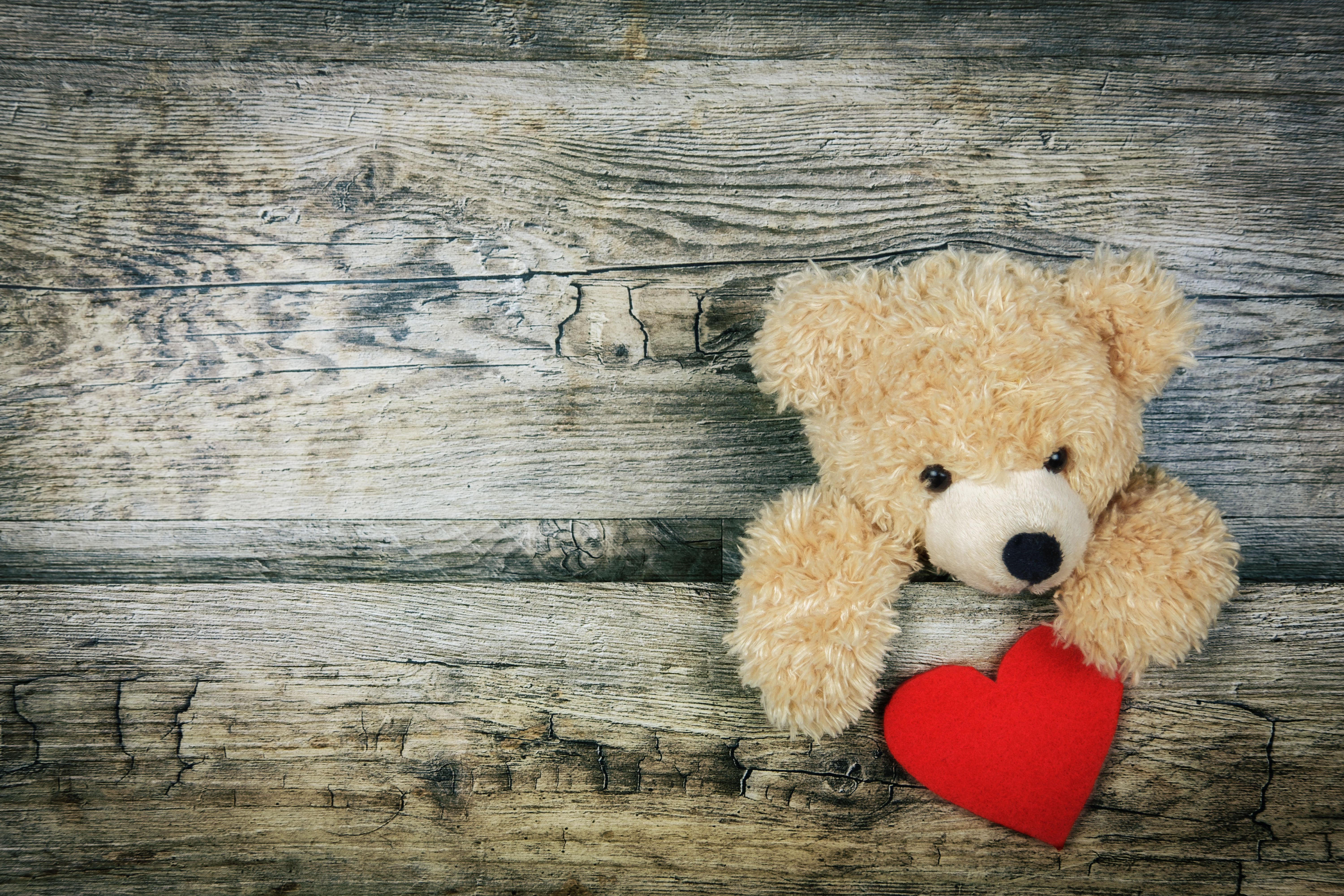 114472 download wallpaper Teddy Bear, Heart, Valentine's Day, Love screensavers and pictures for free