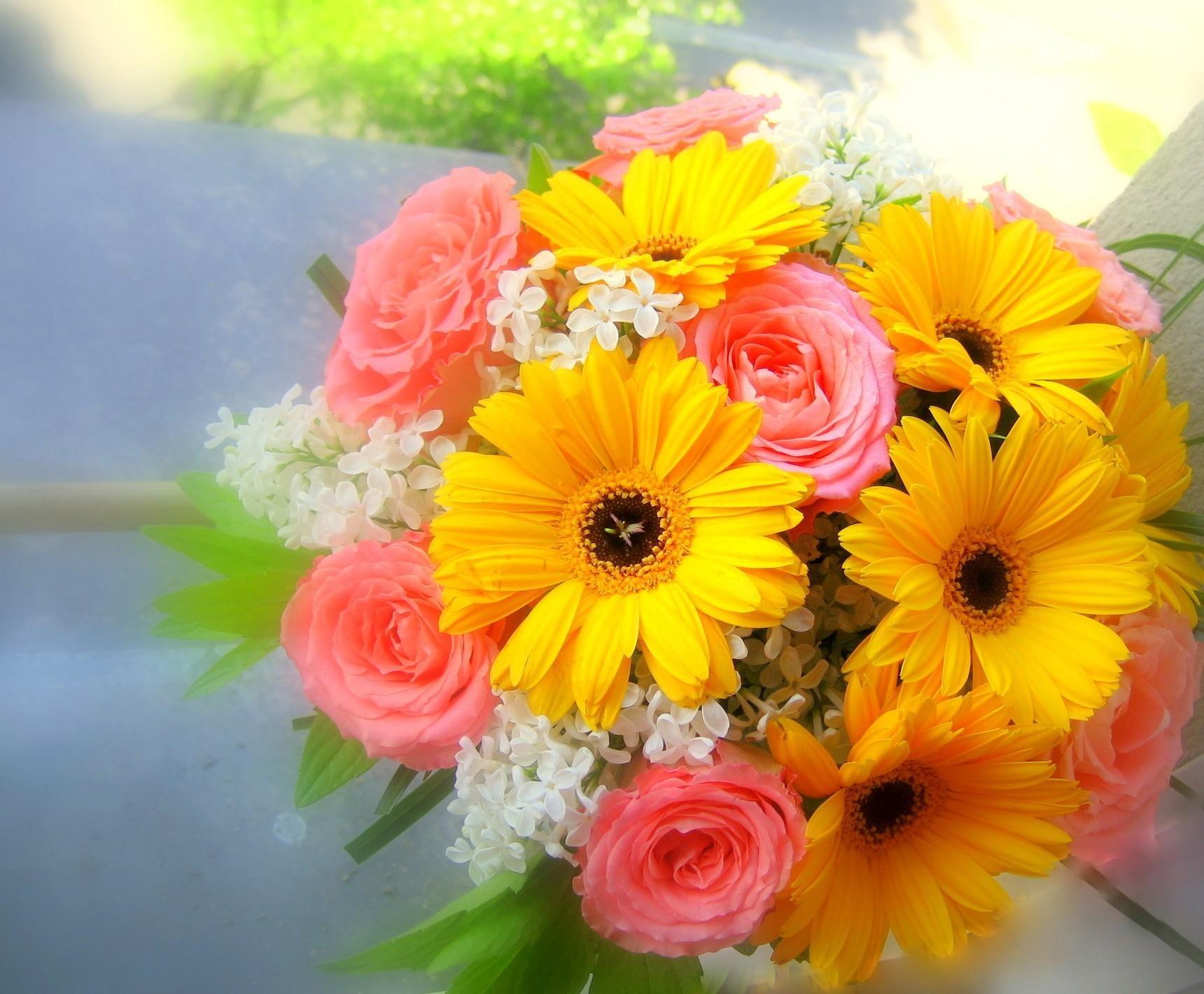 75690 Заставки и Обои Розы на телефон. Скачать Розы, Герберы, Букет, Цветы, Сирень, Красиво картинки бесплатно