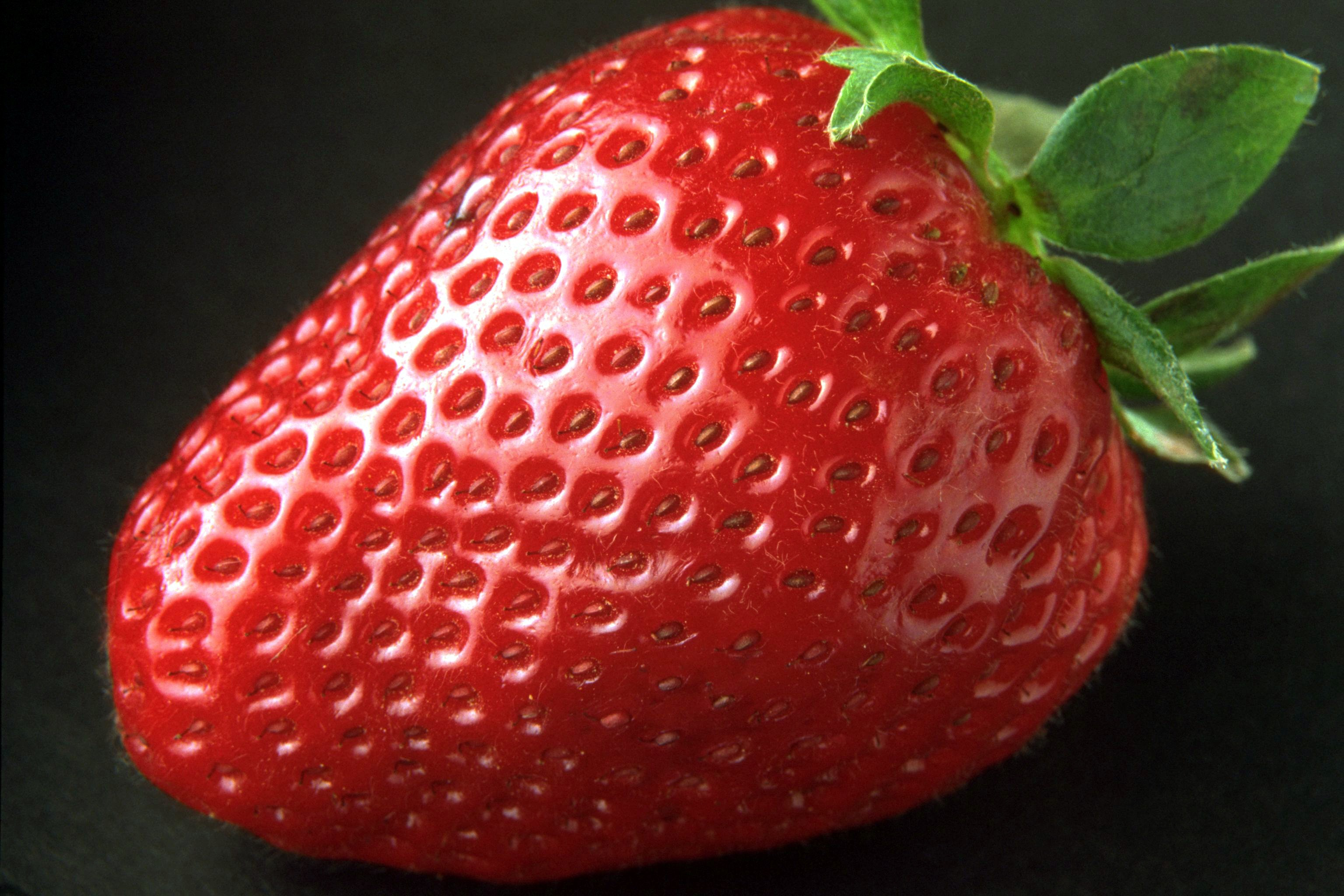 102097 download wallpaper Food, Strawberry, Berry, Ripe, Appetizing screensavers and pictures for free