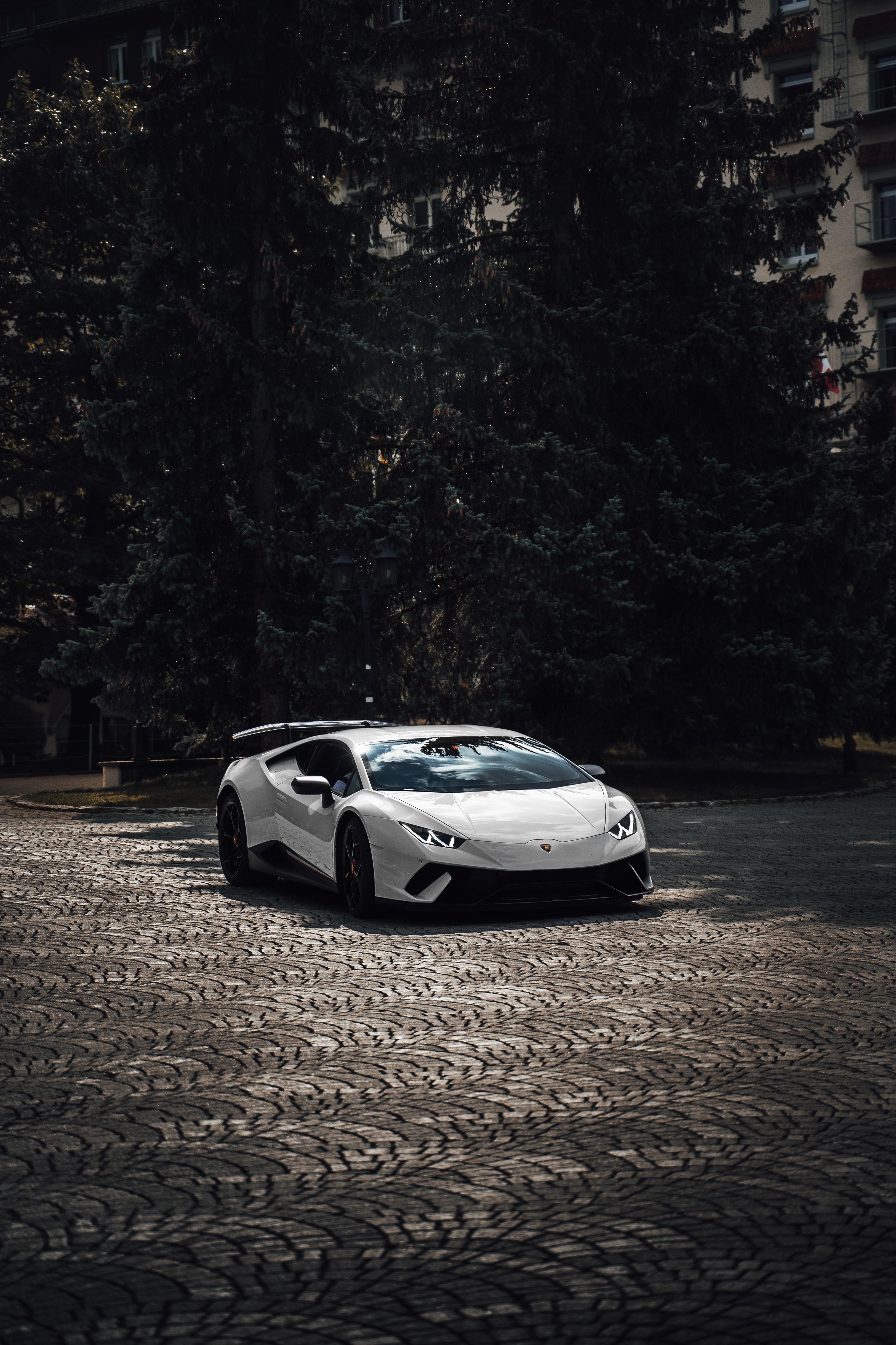 62462 Заставки и Обои Ламборджини (Lamborghini) на телефон. Скачать Ламборджини (Lamborghini), Lamborghini Aventador, Спорткар, Белый, Тачки (Cars), Суперкар картинки бесплатно