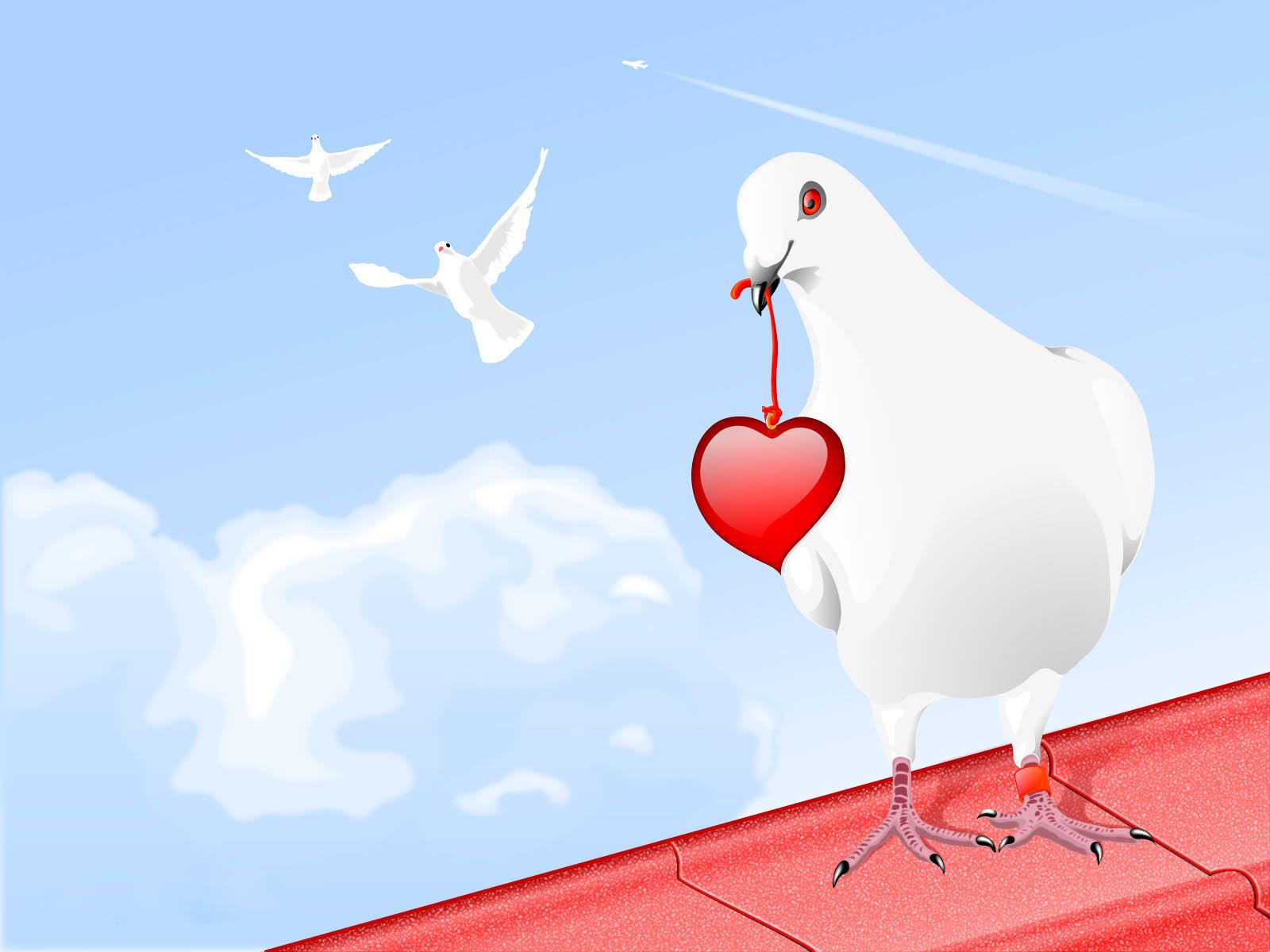 38602 обои 720x1280 на телефон бесплатно, скачать картинки Голуби, Птицы, Рисунки 720x1280 на мобильный