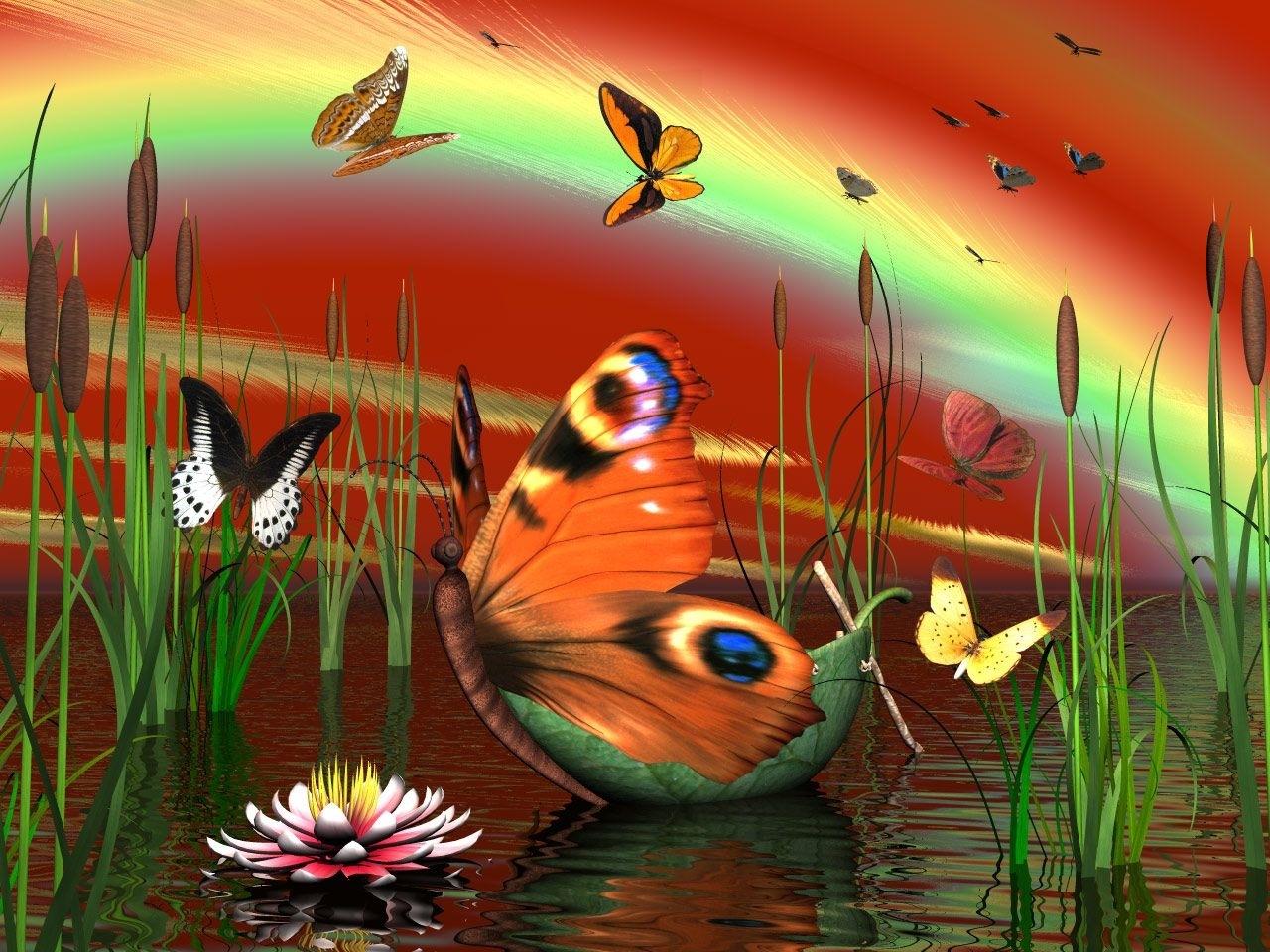 6651 скачать обои Бабочки, Насекомые, Рисунки - заставки и картинки бесплатно
