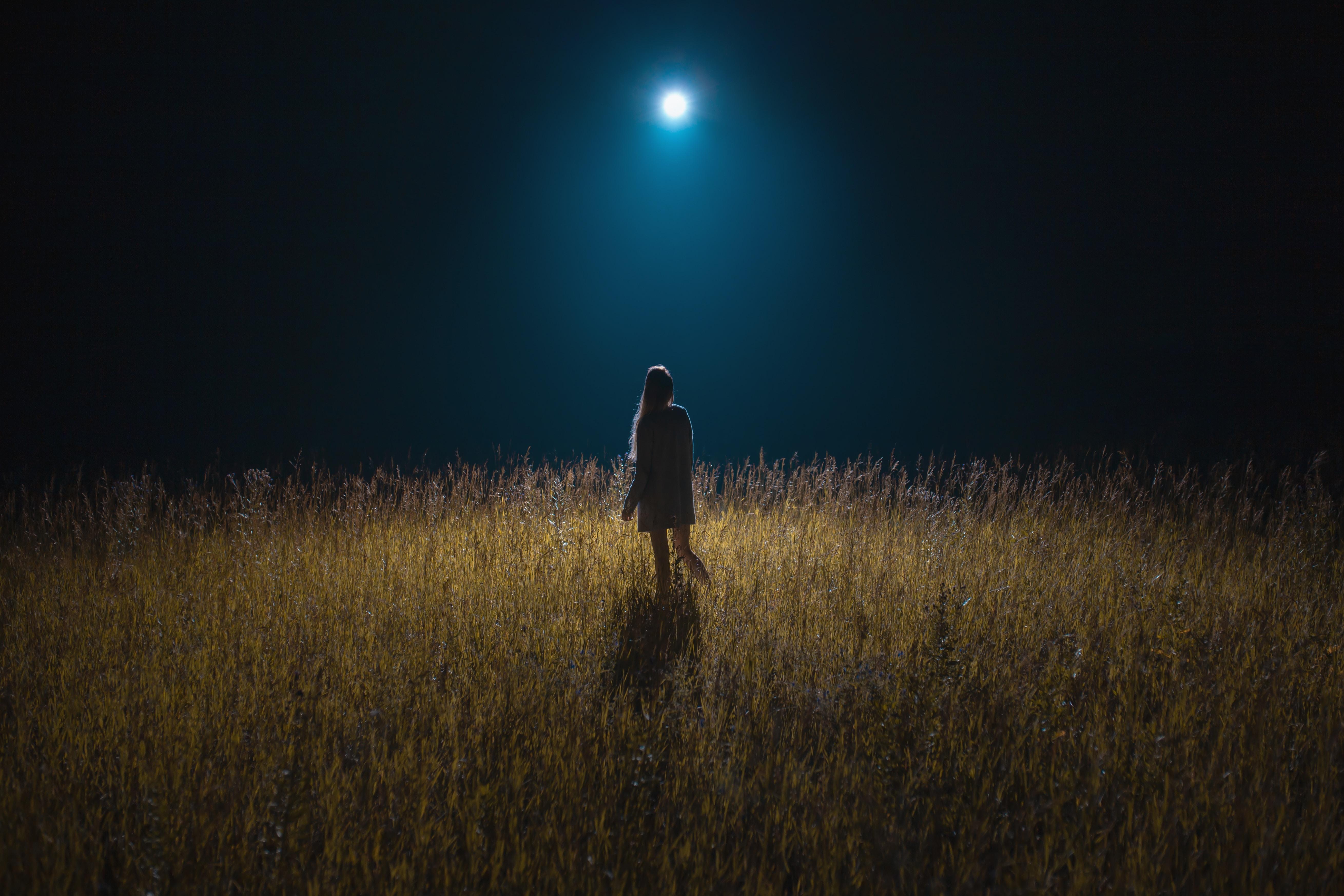 105402 скачать обои Девушка, Ночь, Луна, Разное, Поле, Лунный Свет - заставки и картинки бесплатно