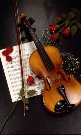 21786 Screensavers and Wallpapers Objects for phone. Download Music, Flowers, Roses, Tools, Objects, Violins pictures for free