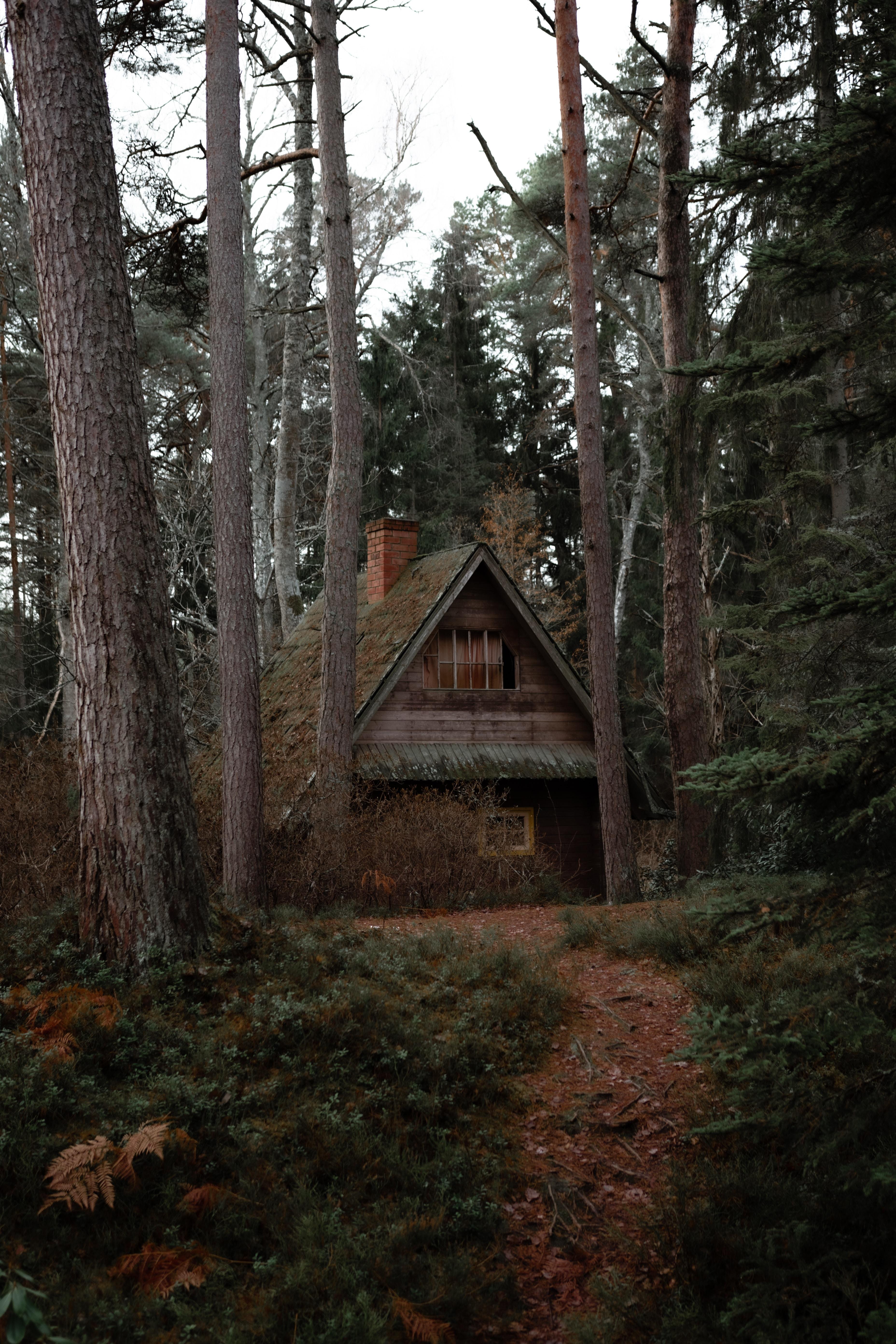 146528 скачать обои Домик, Природа, Деревья, Уединение, Разное, Лес - заставки и картинки бесплатно
