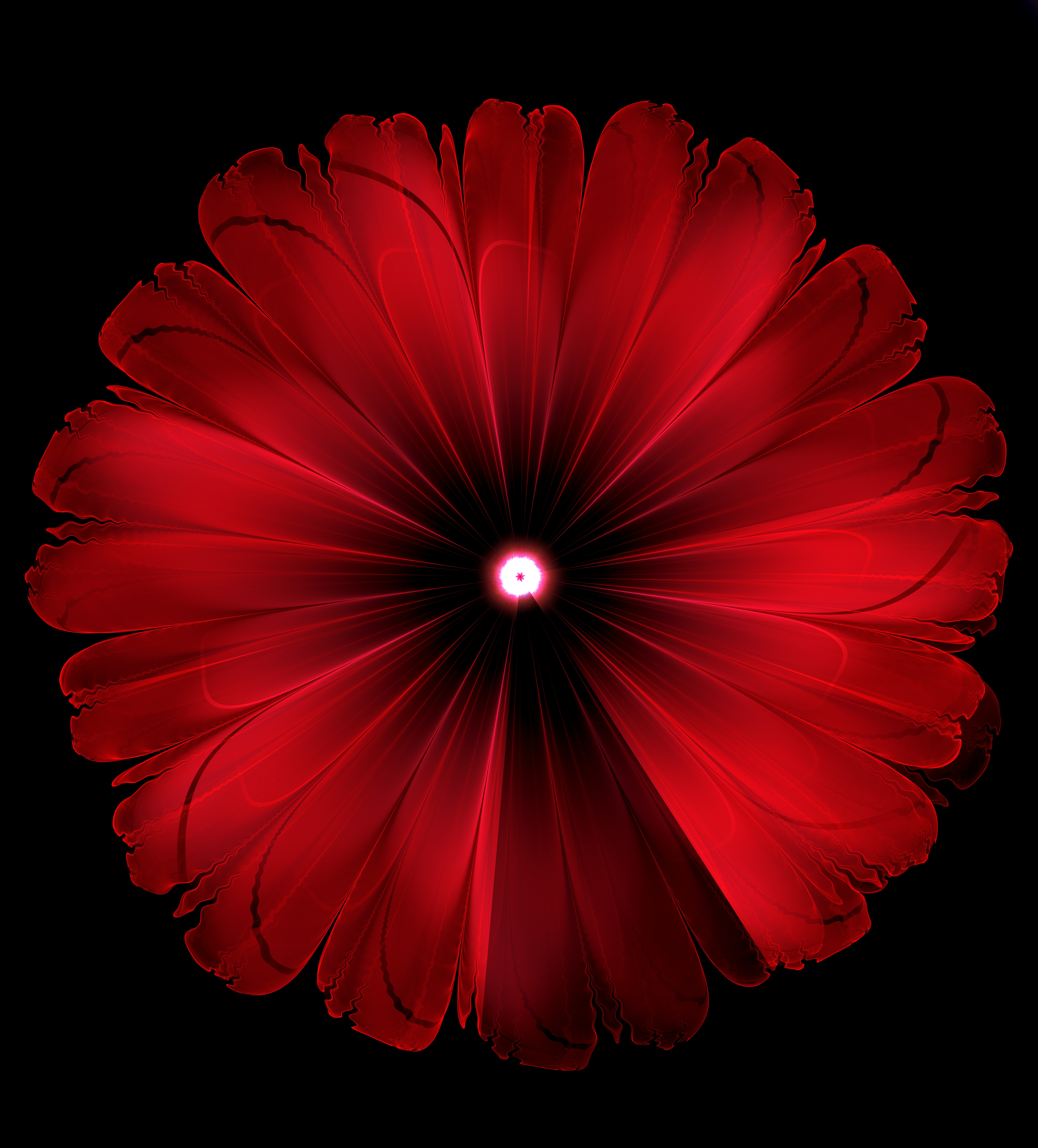 153101 download wallpaper Abstract, Flower, Glow, Fractal, Digital screensavers and pictures for free