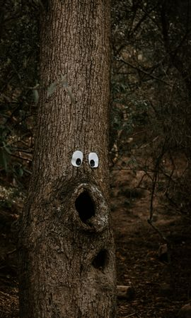 78435 download wallpaper Miscellanea, Miscellaneous, Wood, Tree, Eyes, Trunk, Bark, Funny, Amusingly screensavers and pictures for free