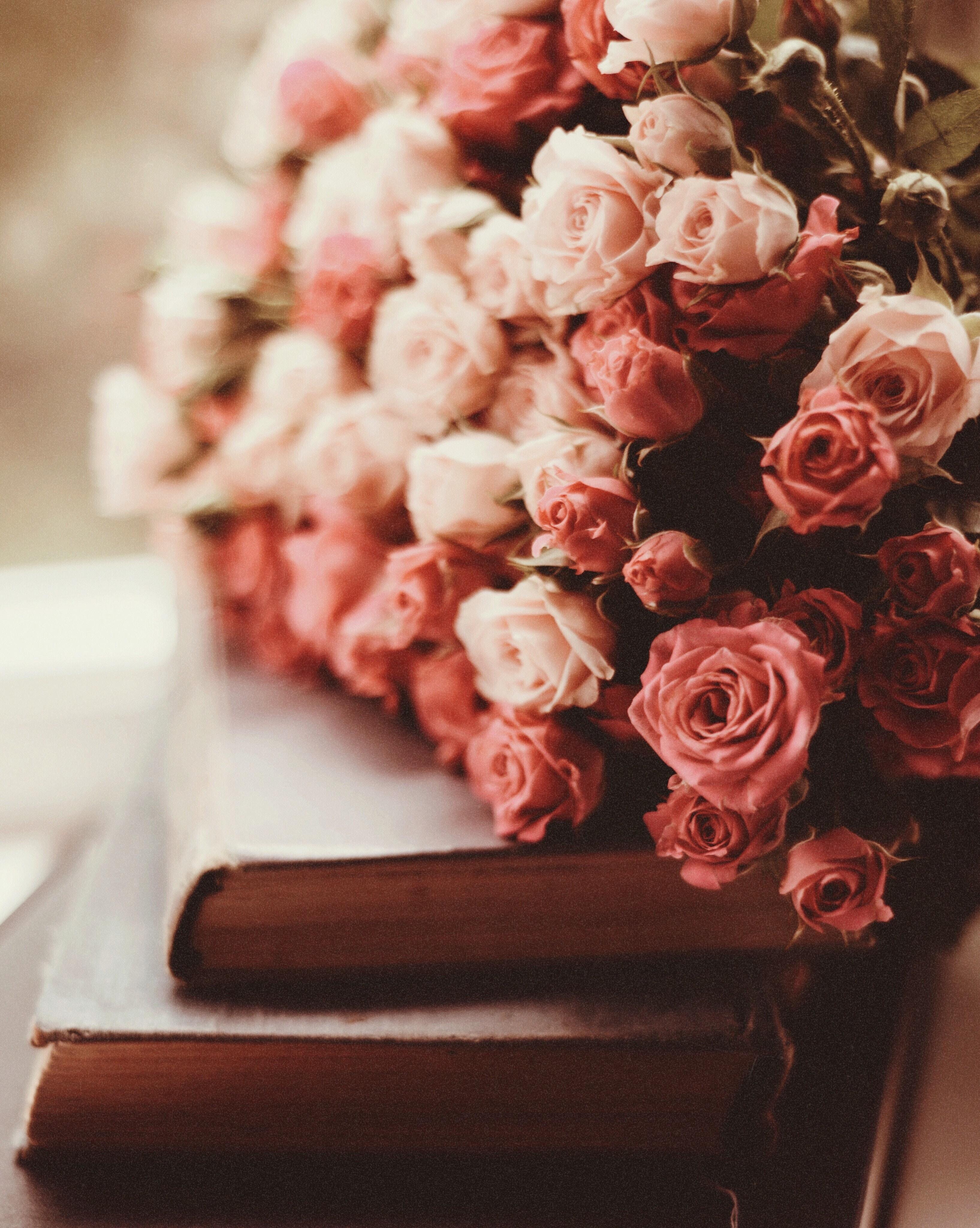 143203 скачать обои Цветы, Букет, Розовые, Книги, Розы - заставки и картинки бесплатно