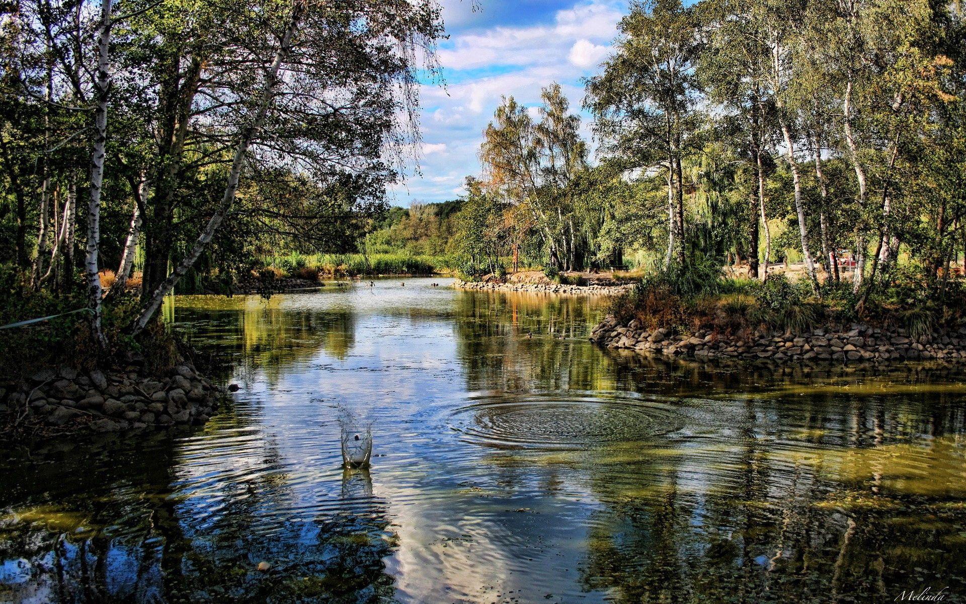 75790 скачать обои Река, Природа, Деревья, Трава - заставки и картинки бесплатно