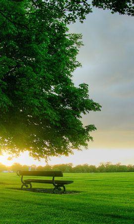 21319 скачать обои Пейзаж, Деревья, Закат, Трава - заставки и картинки бесплатно