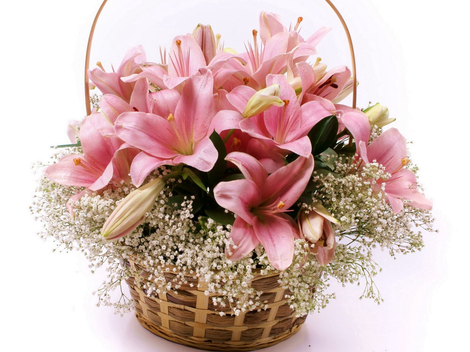 90197 скачать обои Цветы, Лилии, Корзина, Много - заставки и картинки бесплатно