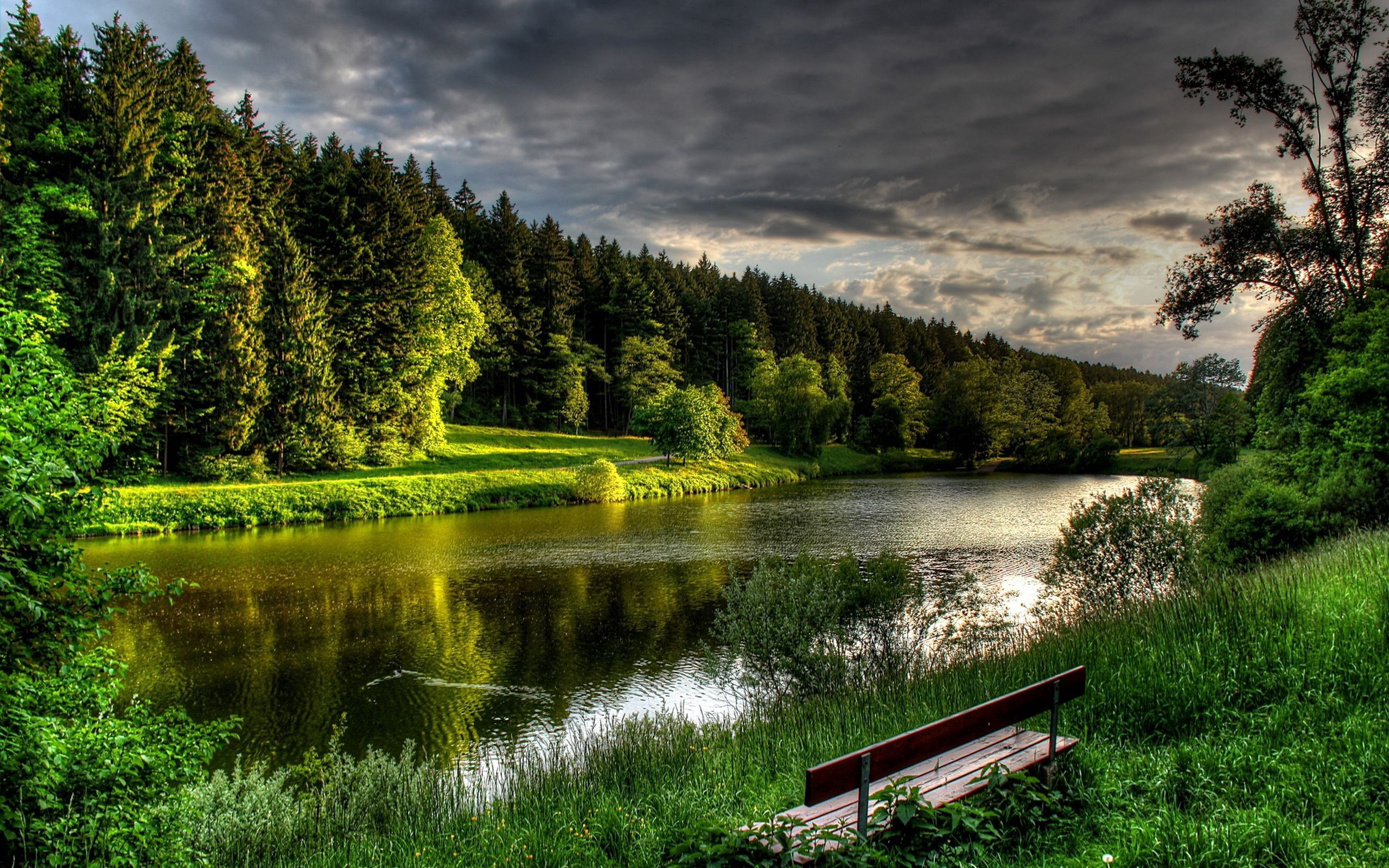 64769 Screensavers and Wallpapers Bench for phone. Download Nature, Rivers, Grass, Summer, Shore, Bank, Bench, Handsomely, It's Beautiful, Calmness, Tranquillity pictures for free