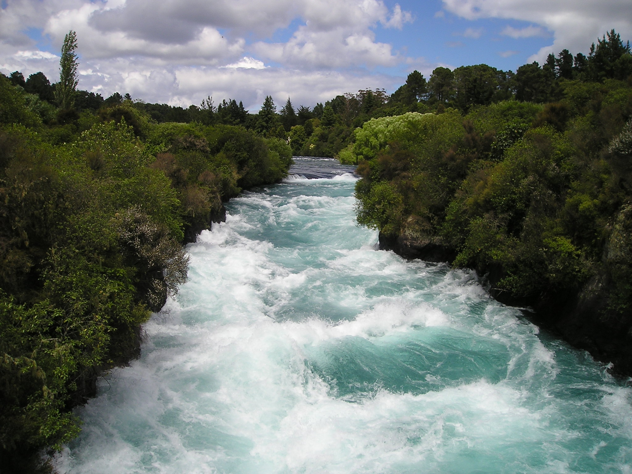 106910 Screensavers and Wallpapers New Zealand for phone. Download Nature, Rivers, Trees, New Zealand, Flow pictures for free