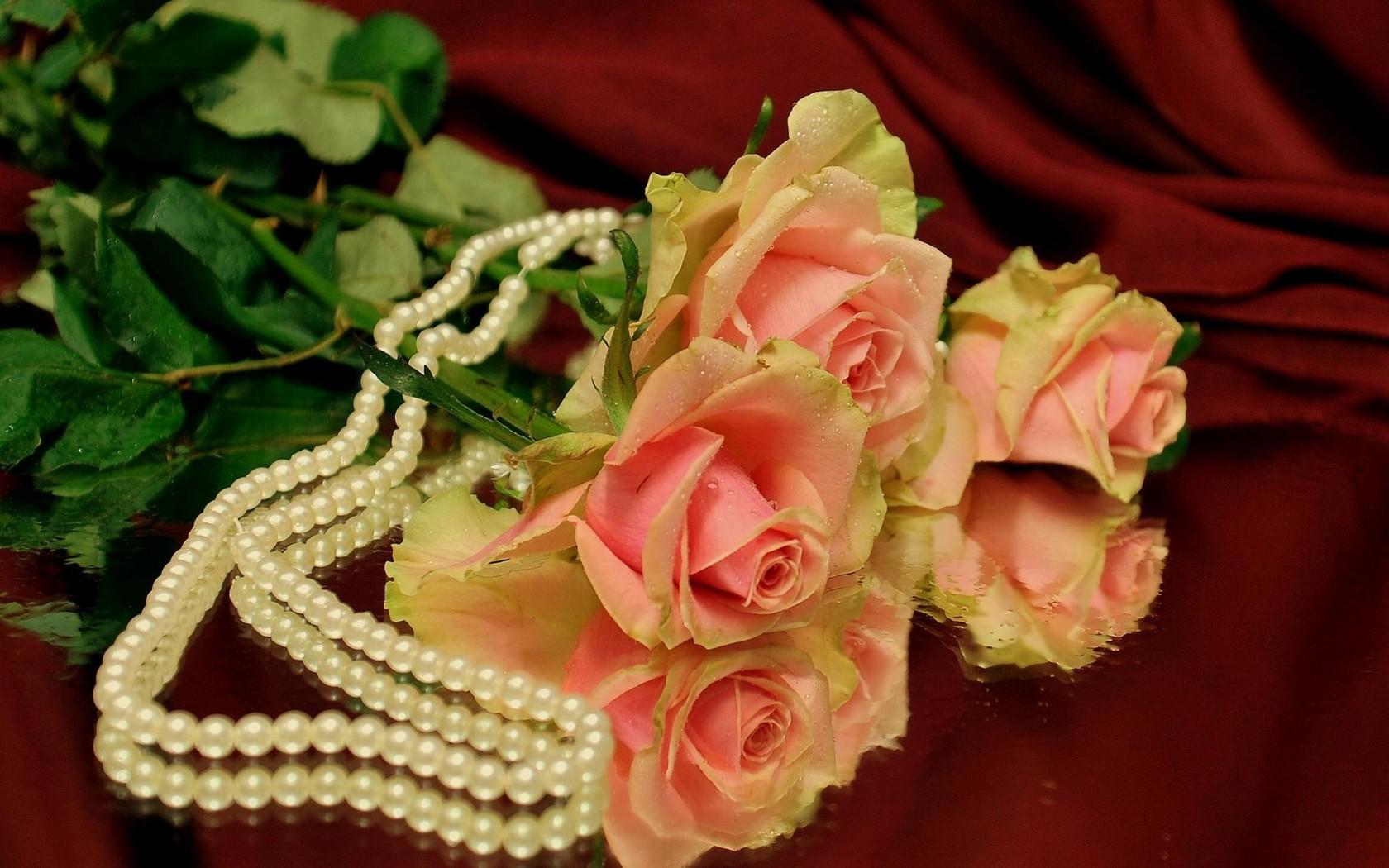 32643 télécharger le fond d'écran Plantes, Fleurs, Roses, Bouquets - économiseurs d'écran et images gratuitement
