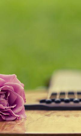 50252 descargar fondo de pantalla Música, Plantas, Flores, Guitarras, Objetos: protectores de pantalla e imágenes gratis