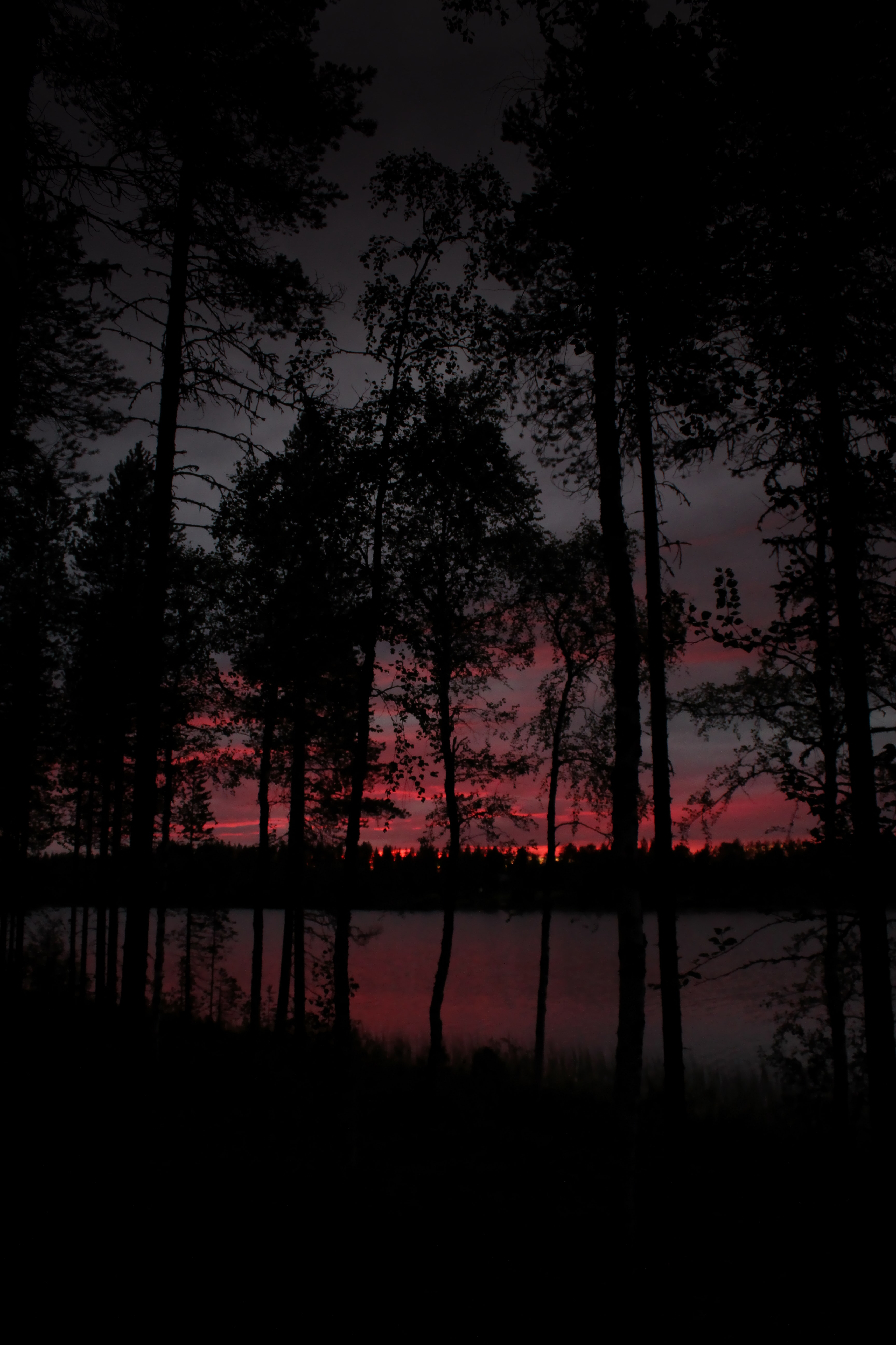 116104 download wallpaper Dark, Trees, Lake, Dusk, Twilight screensavers and pictures for free
