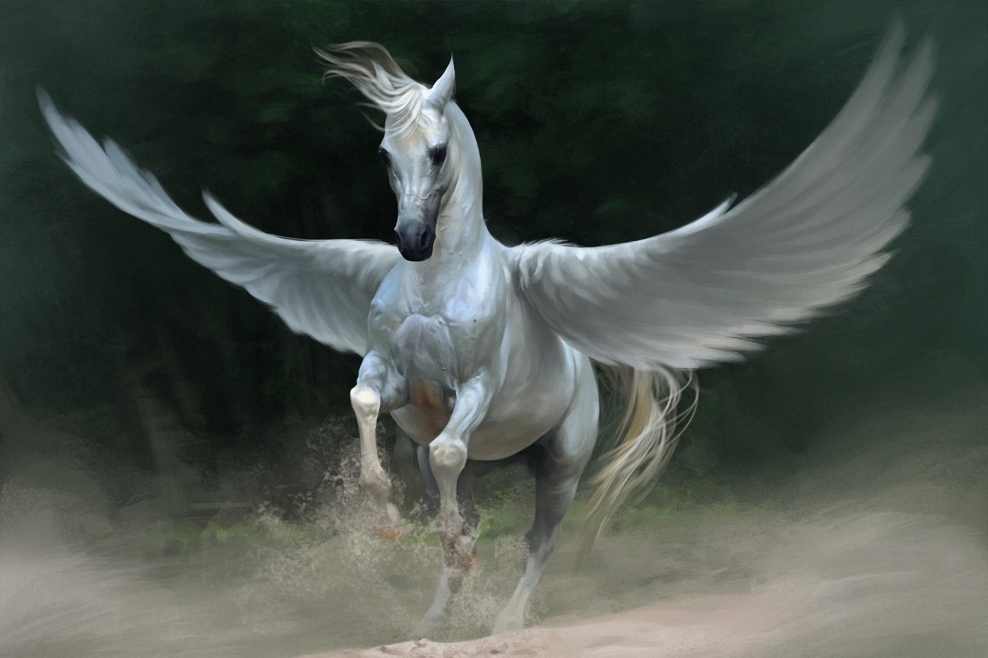 54980 download wallpaper Fantasy, Pegasus, Horse, Wings screensavers and pictures for free