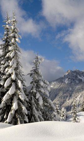 13756 скачать обои Пейзаж, Зима, Деревья, Снег, Елки - заставки и картинки бесплатно
