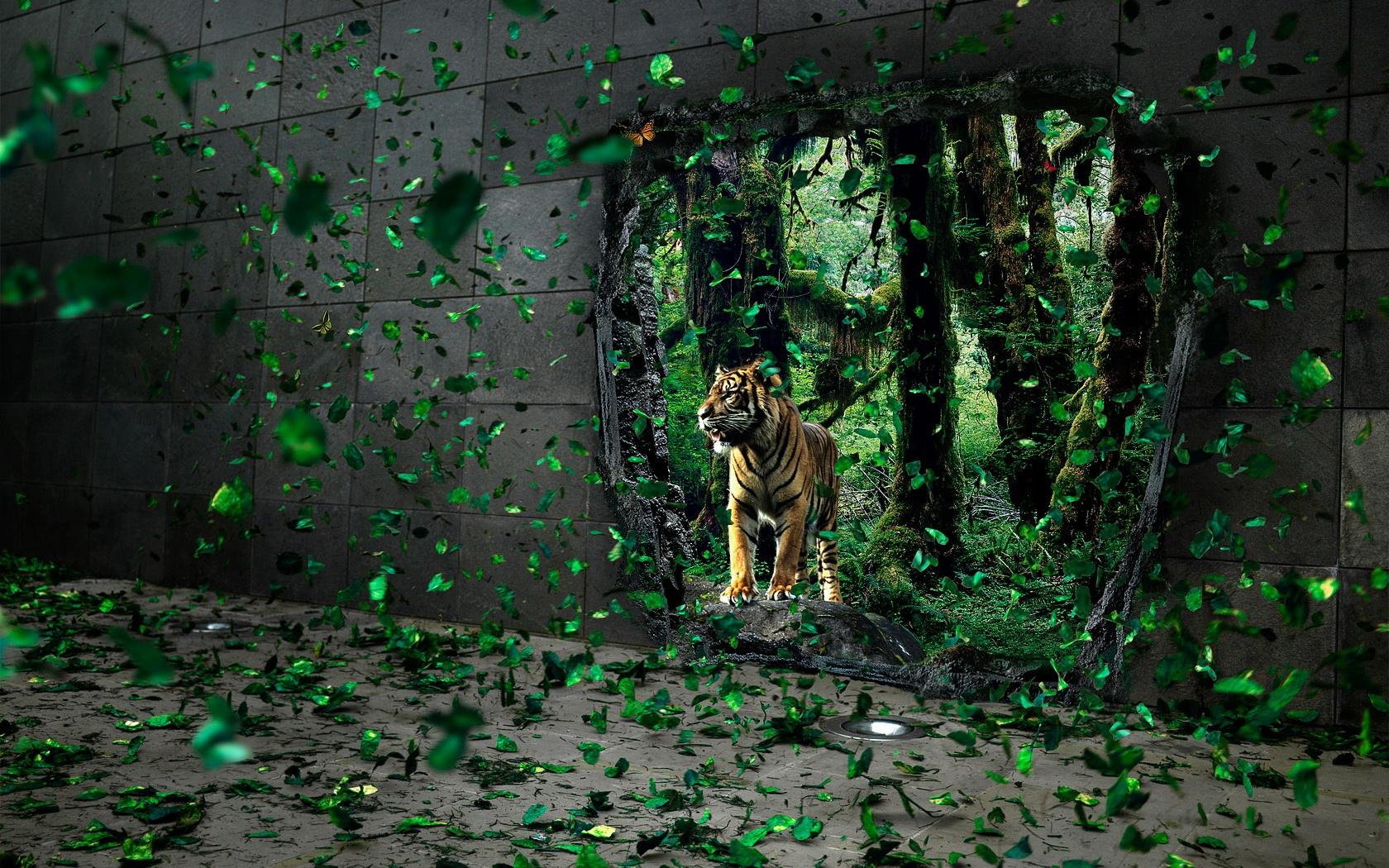 33456 Заставки и Обои Тигры на телефон. Скачать Животные, Тигры картинки бесплатно