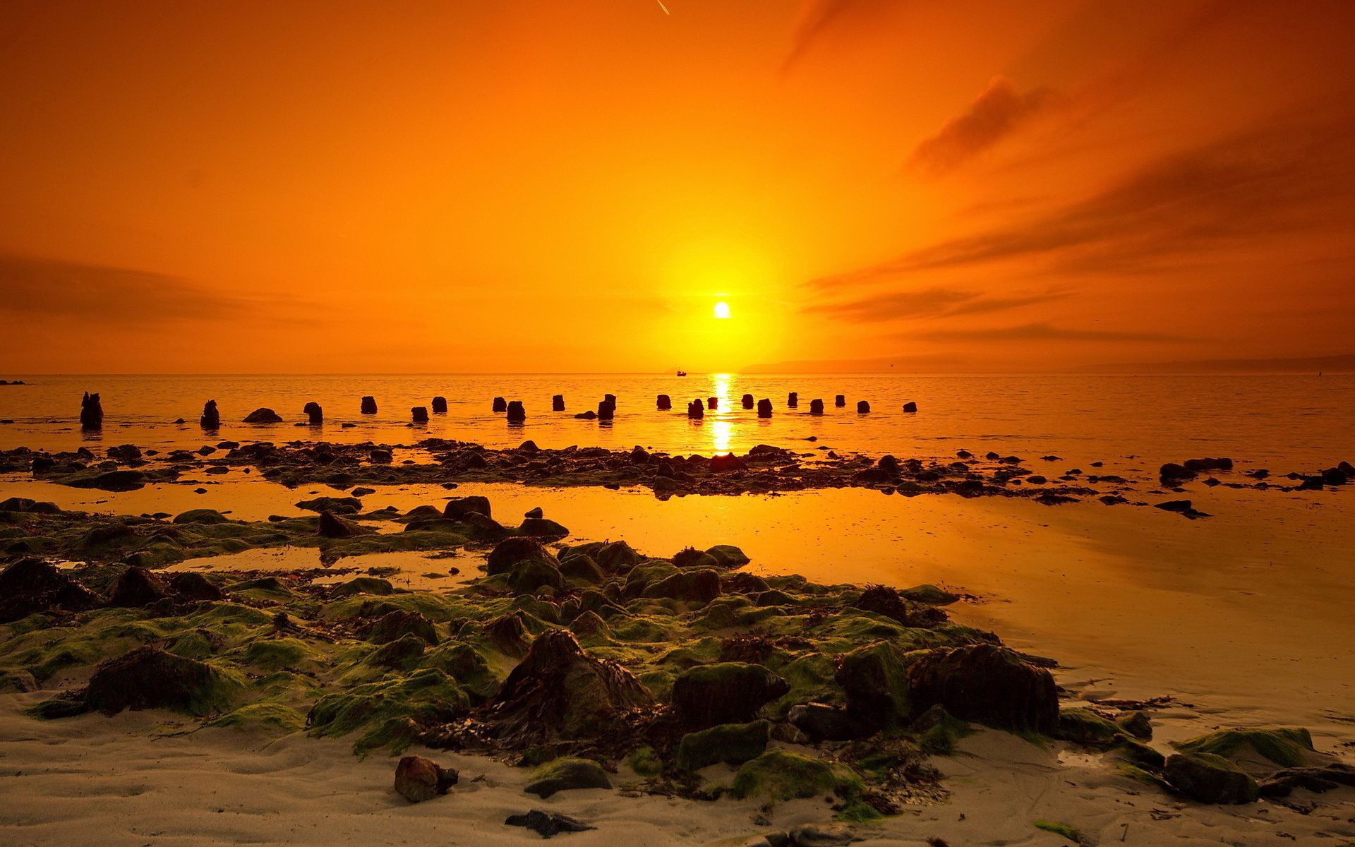 125003 download wallpaper Nature, Sea, Sunset, Landscape screensavers and pictures for free