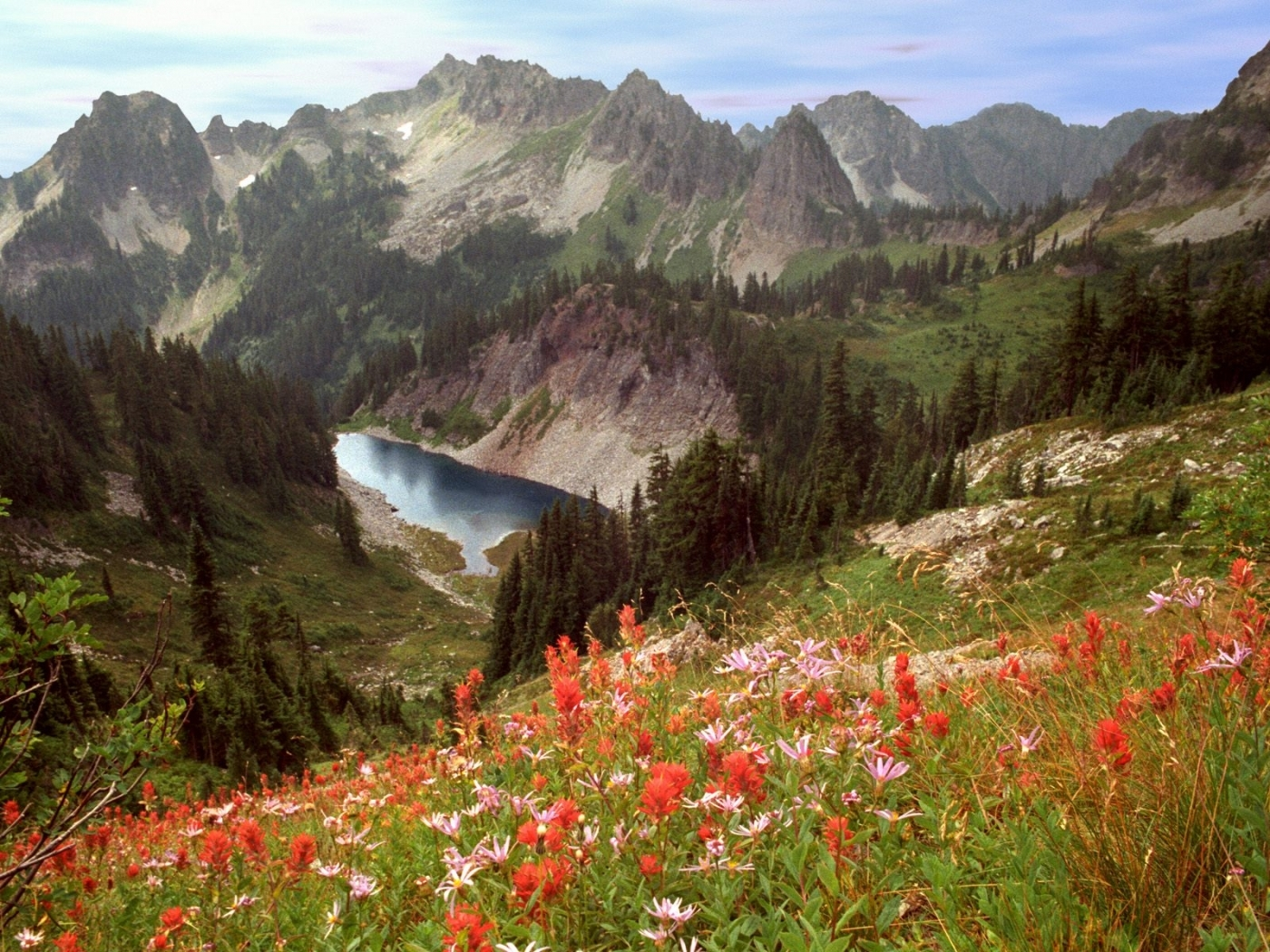 23590 descargar fondo de pantalla Paisaje, Flores, Árboles, Montañas: protectores de pantalla e imágenes gratis