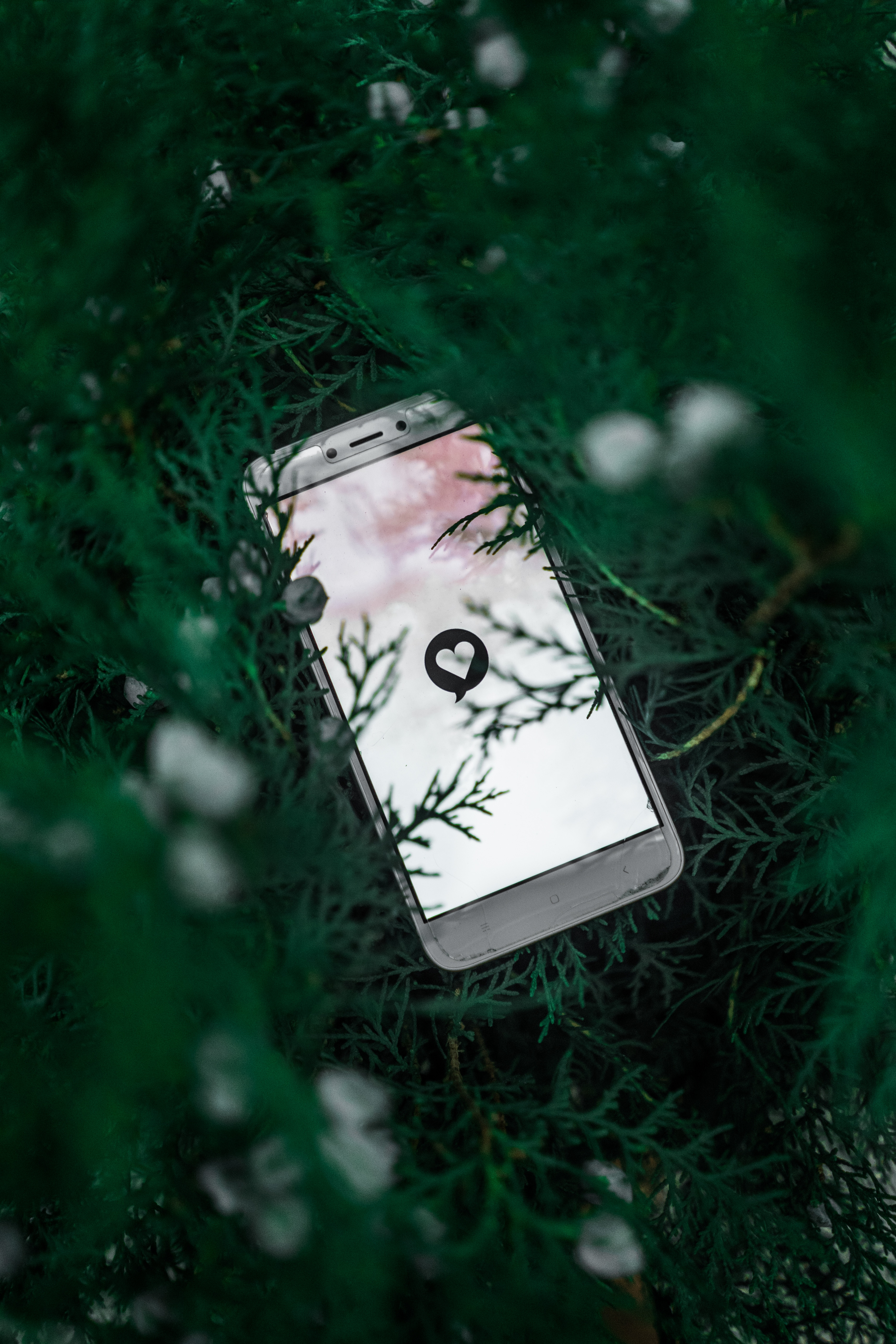 61316 download wallpaper Technologies, Technology, Telephone, Screen, Heart, Symbol, Plant, Branches screensavers and pictures for free