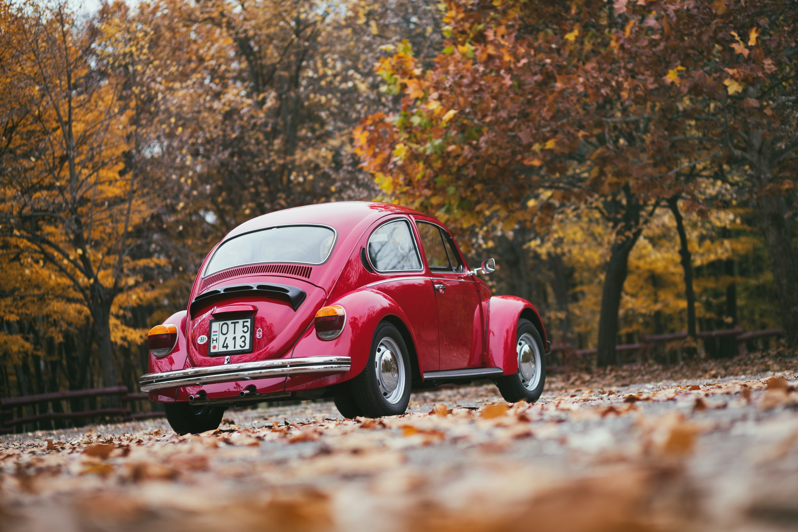 121868 download wallpaper Volkswagen, Cars, Back View, Rear View screensavers and pictures for free