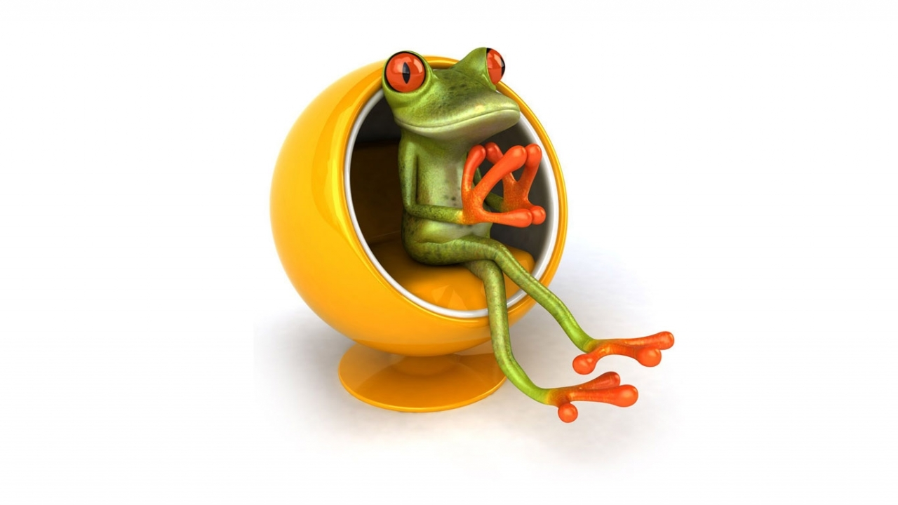 38865 download wallpaper Frogs, Pictures screensavers and pictures for free
