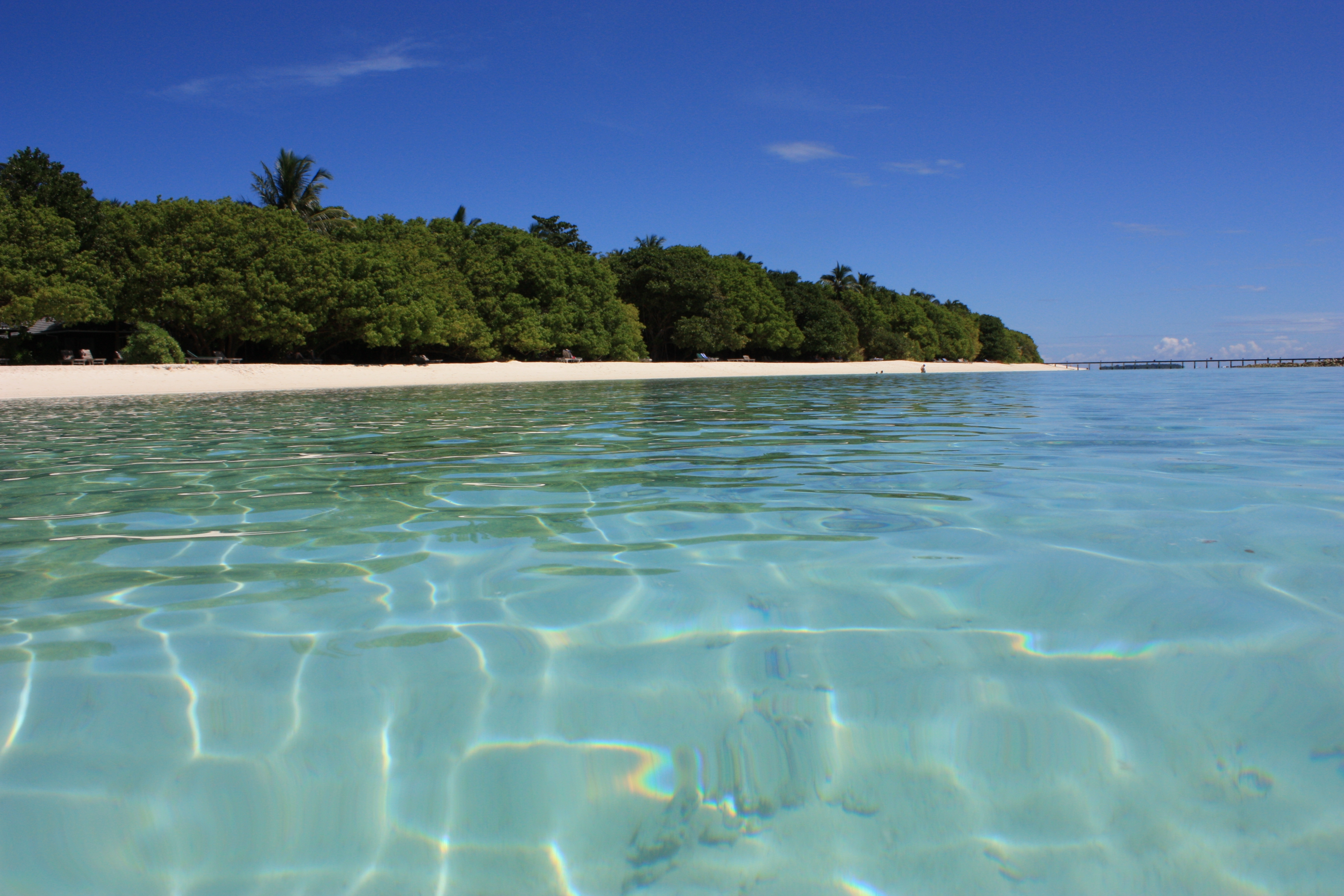 138722 Salvapantallas y fondos de pantalla Mar en tu teléfono. Descarga imágenes de Naturaleza, Maldivas, Mar, Verano, Orilla, Banco gratis