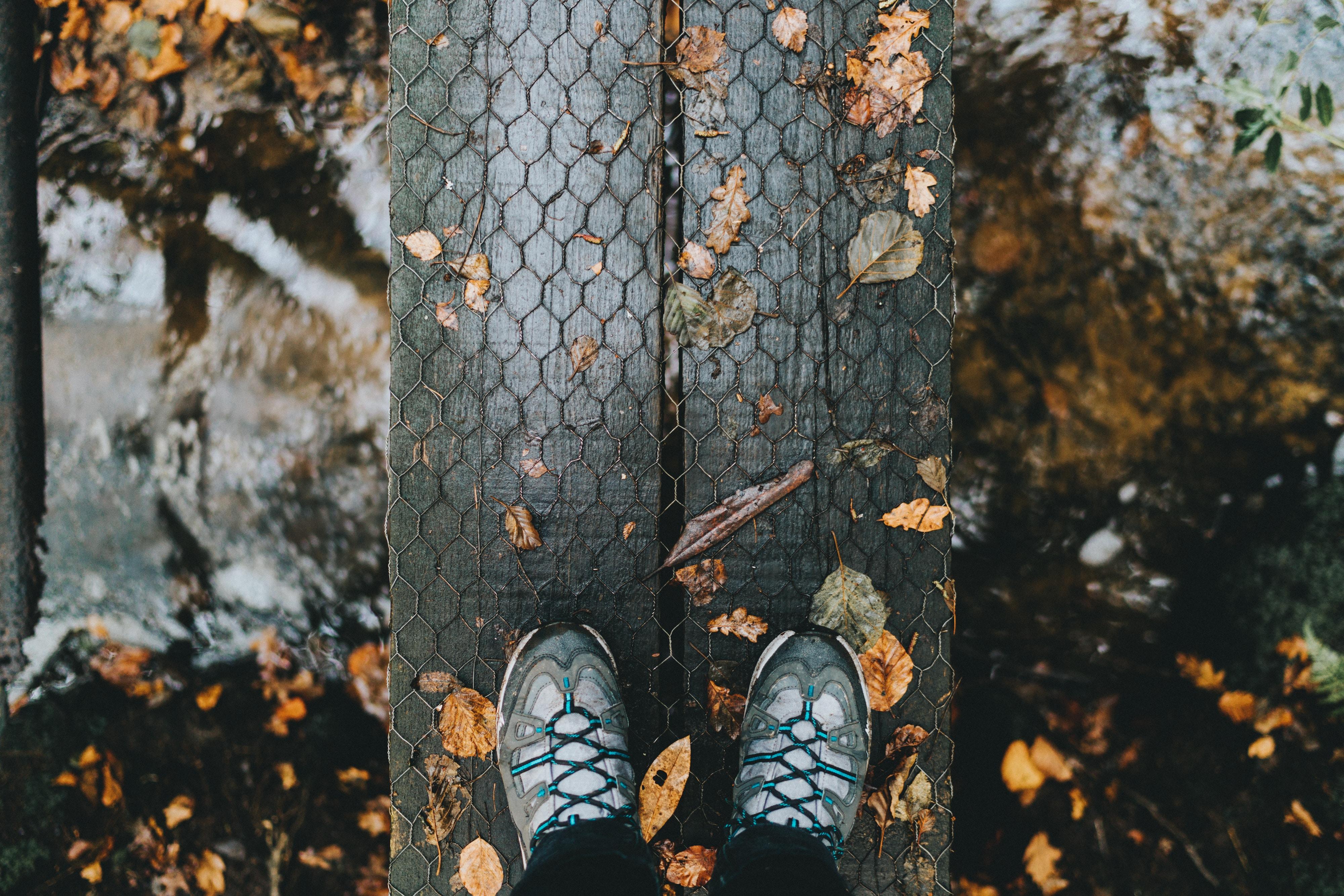 129793 скачать обои Природа, Ноги, Осень, Листва, Дождь - заставки и картинки бесплатно