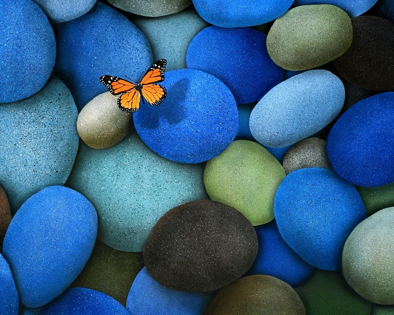 21566 скачать обои Насекомые, Бабочки, Фон, Камни - заставки и картинки бесплатно