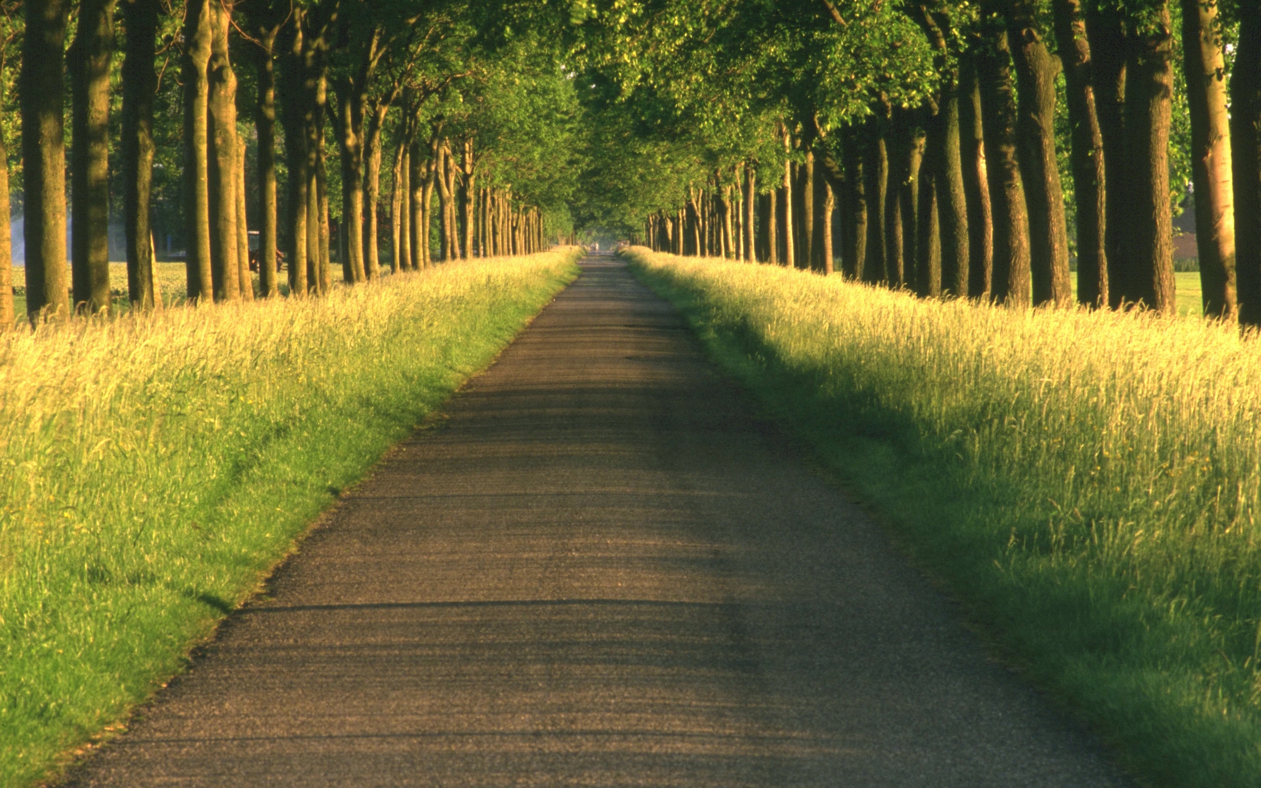 49718 download wallpaper Landscape, Nature, Roads screensavers and pictures for free
