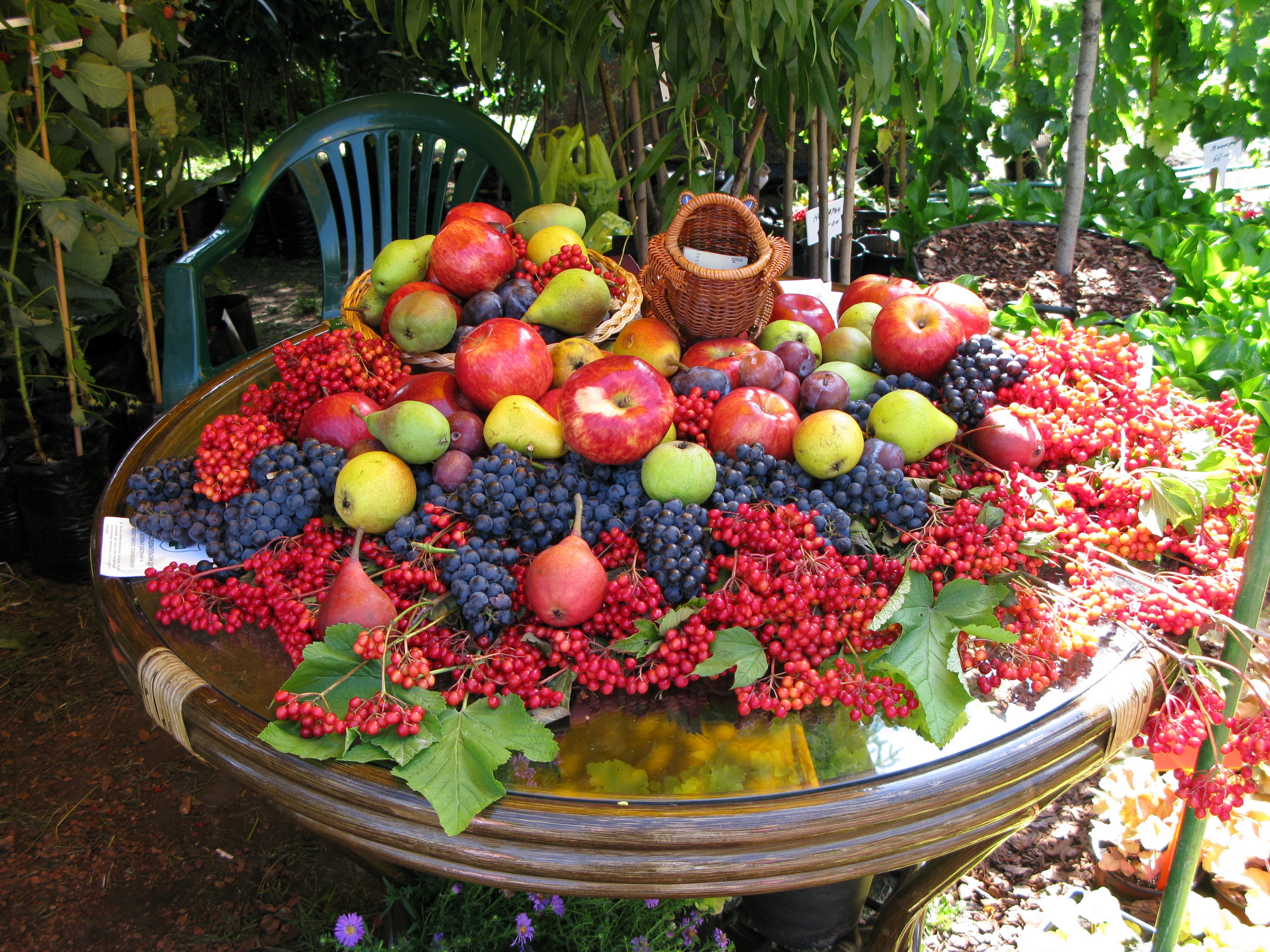 132284 Screensavers and Wallpapers Fruits for phone. Download Food, Table, Lot, Fruits, Berries pictures for free