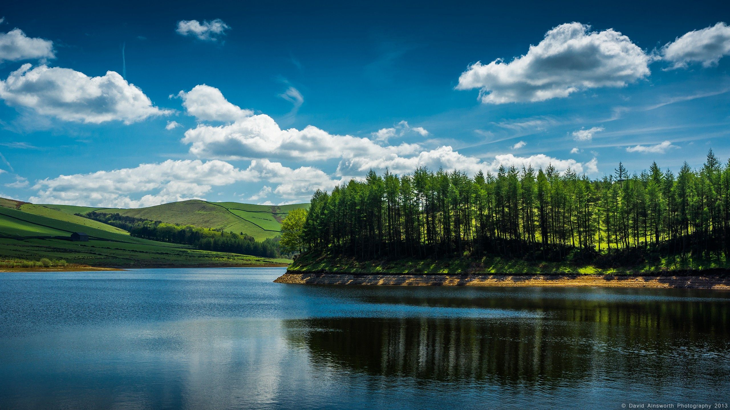 51153 Screensavers and Wallpapers Summer for phone. Download Nature, Rivers, Trees, Summer, Shore, Bank, Flow pictures for free