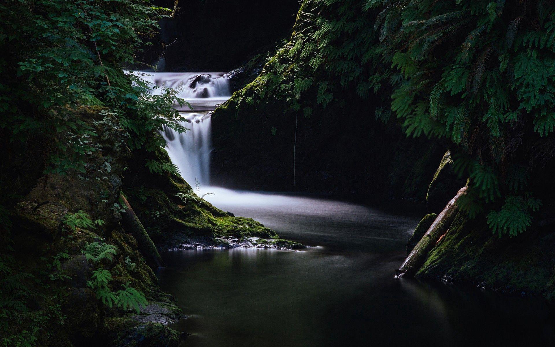 110742 économiseurs d'écran et fonds d'écran Sombre sur votre téléphone. Téléchargez Sombre, Nature, Herbe, Cascade images gratuitement