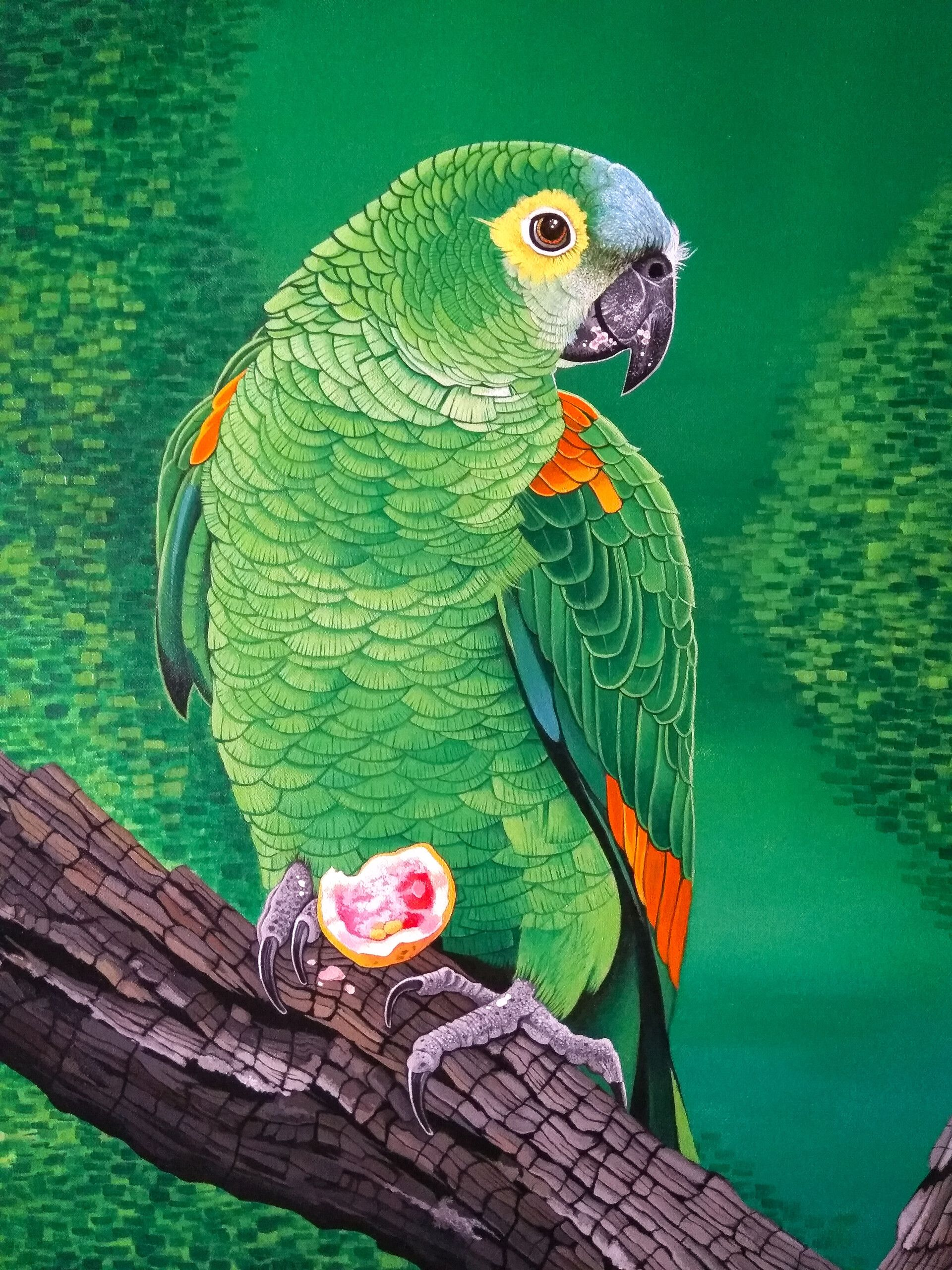63317 download wallpaper Macaw, Parrots, Bird, Bright, Branch, Art screensavers and pictures for free