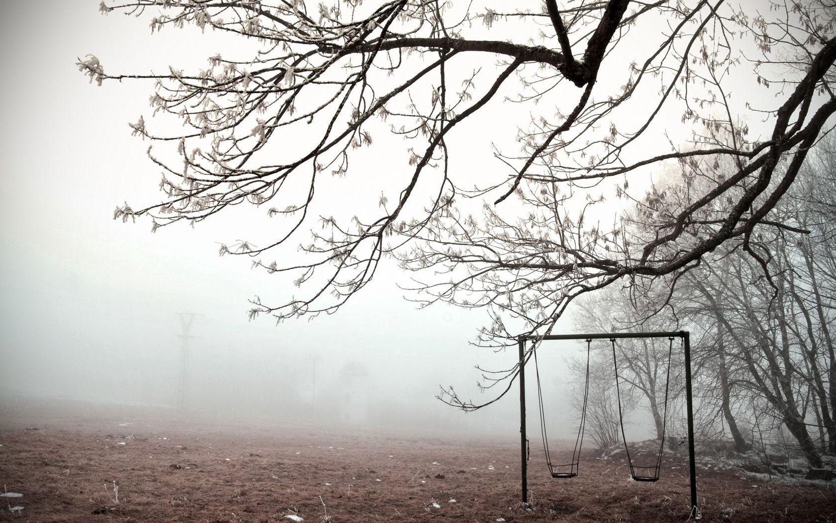 140117 скачать обои Природа, Качели, Дерево, Заморозки, Ветви, Лед, Холод, Пустота, Туман - заставки и картинки бесплатно