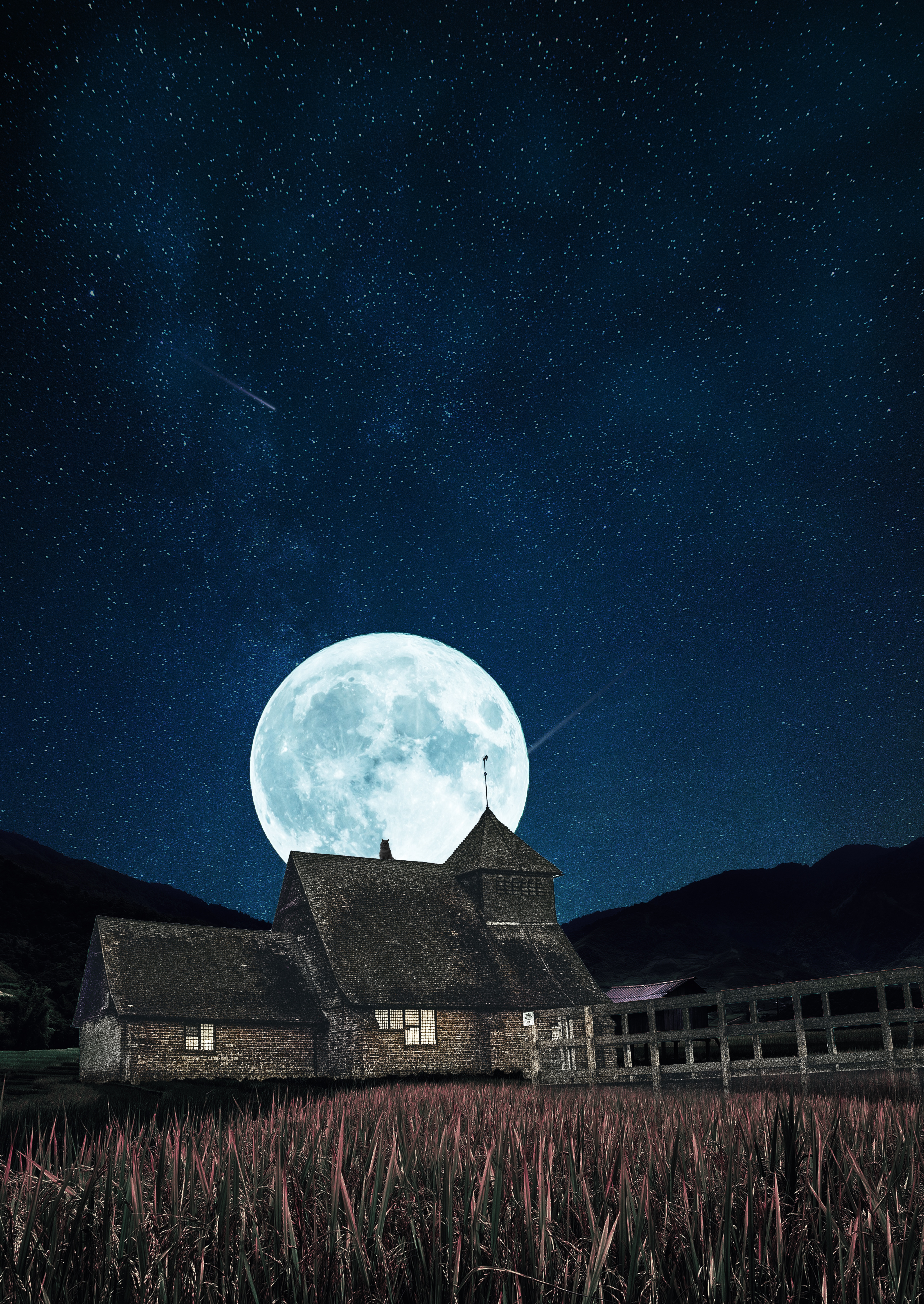 121845 download wallpaper Night, Moon, Building, Miscellanea, Miscellaneous, Starry Sky, Full Moon screensavers and pictures for free