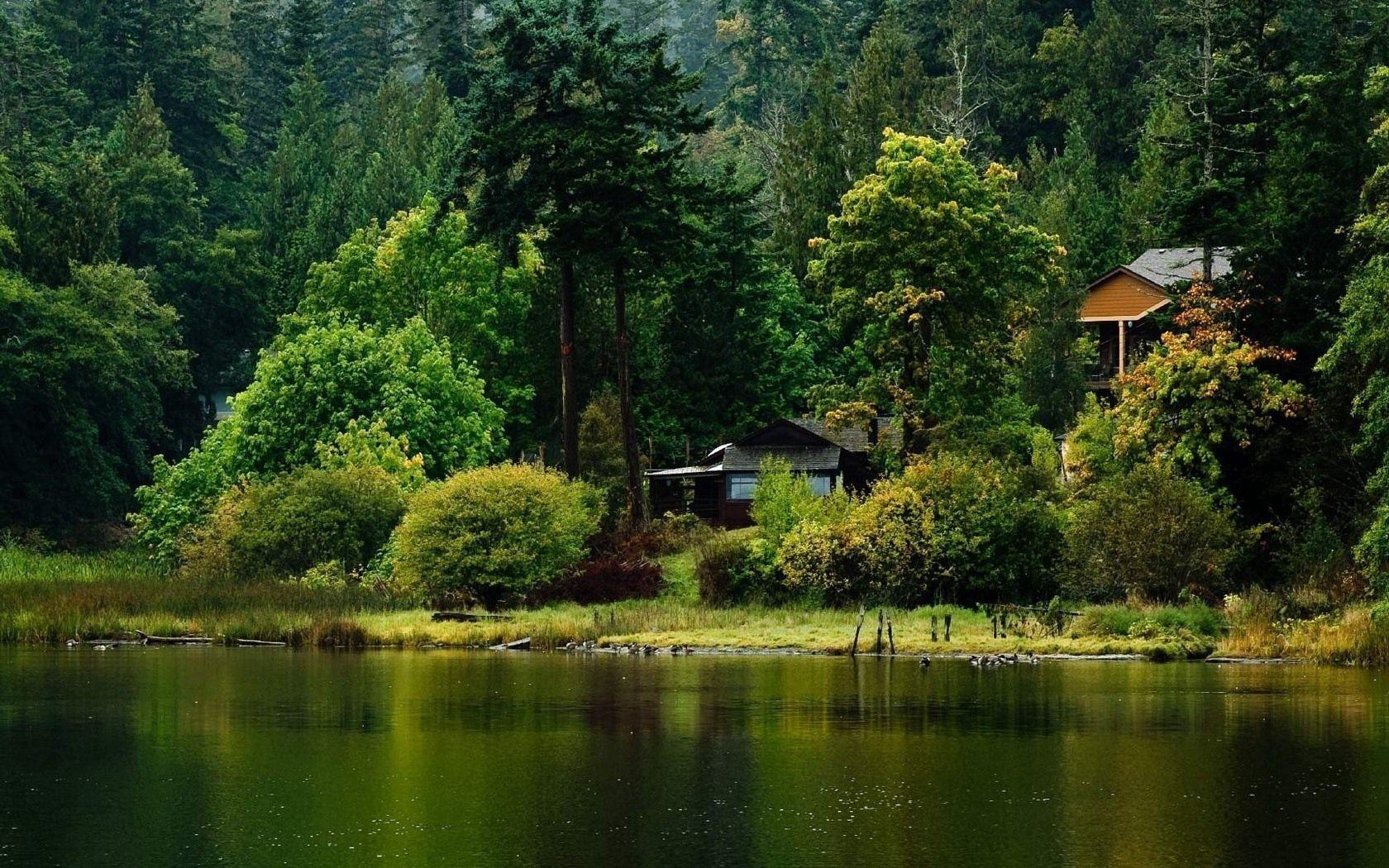 136483 скачать обои Домик, Природа, Озеро, Берег, Лес - заставки и картинки бесплатно