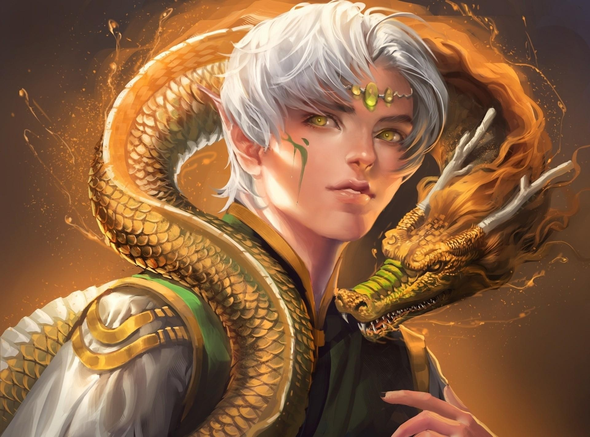 92929 download wallpaper Fantasy, Elf, Sight, Opinion, Dragon, Friendship screensavers and pictures for free