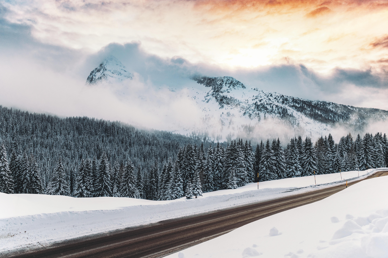 93913 papel de parede 1125x2436 em seu telefone gratuitamente, baixe imagens Inverno, Natureza, Montanhas, Neve, Estrada, Caminho, Névoa, Nevoeiro 1125x2436 em seu celular