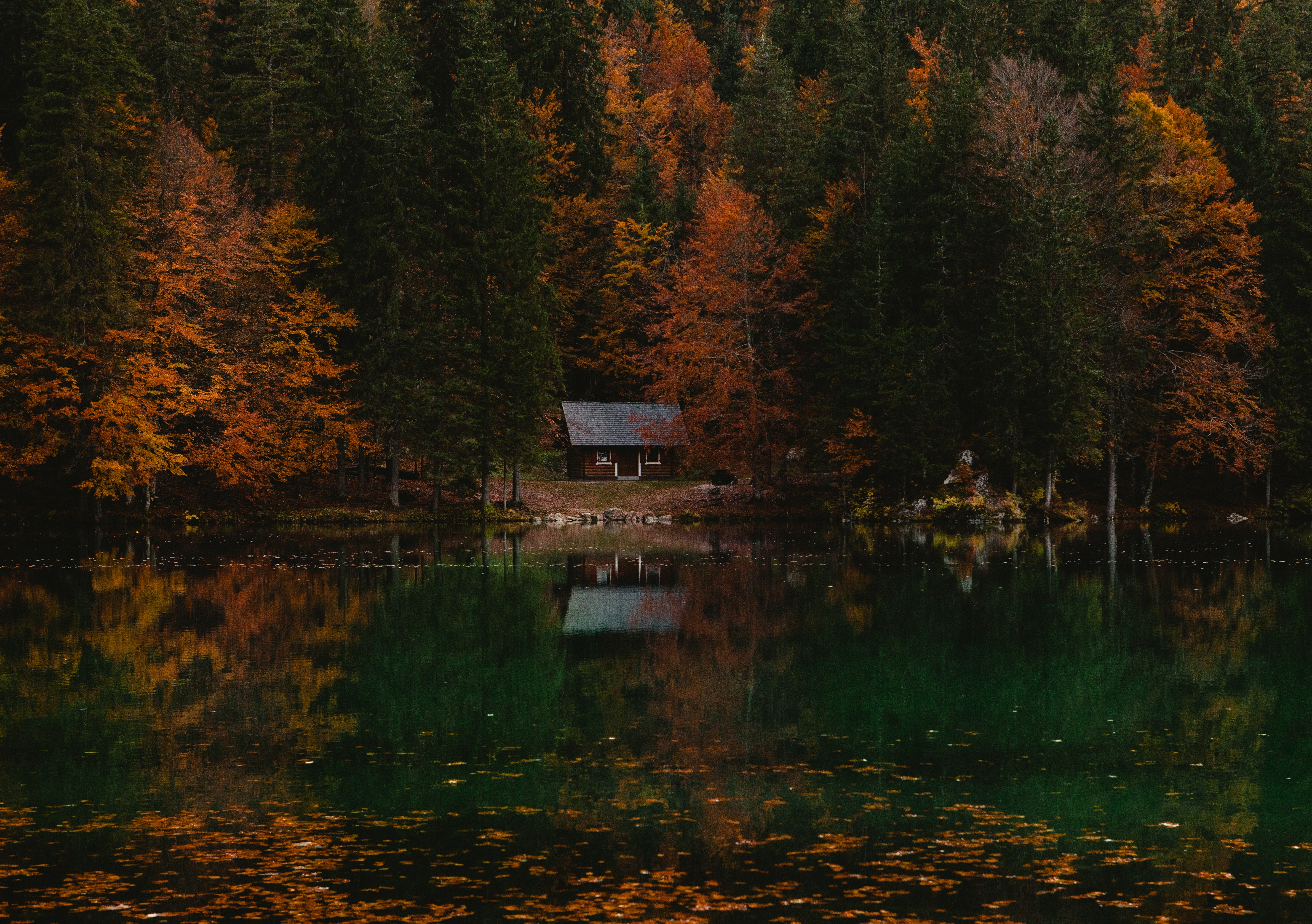 73937 скачать обои Домик, Италия, Озеро, Природа, Осень, Лес - заставки и картинки бесплатно