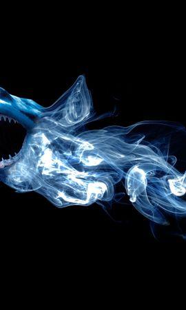 25490 baixar papel de parede Animais, Fundo, Sharks - protetores de tela e imagens gratuitamente