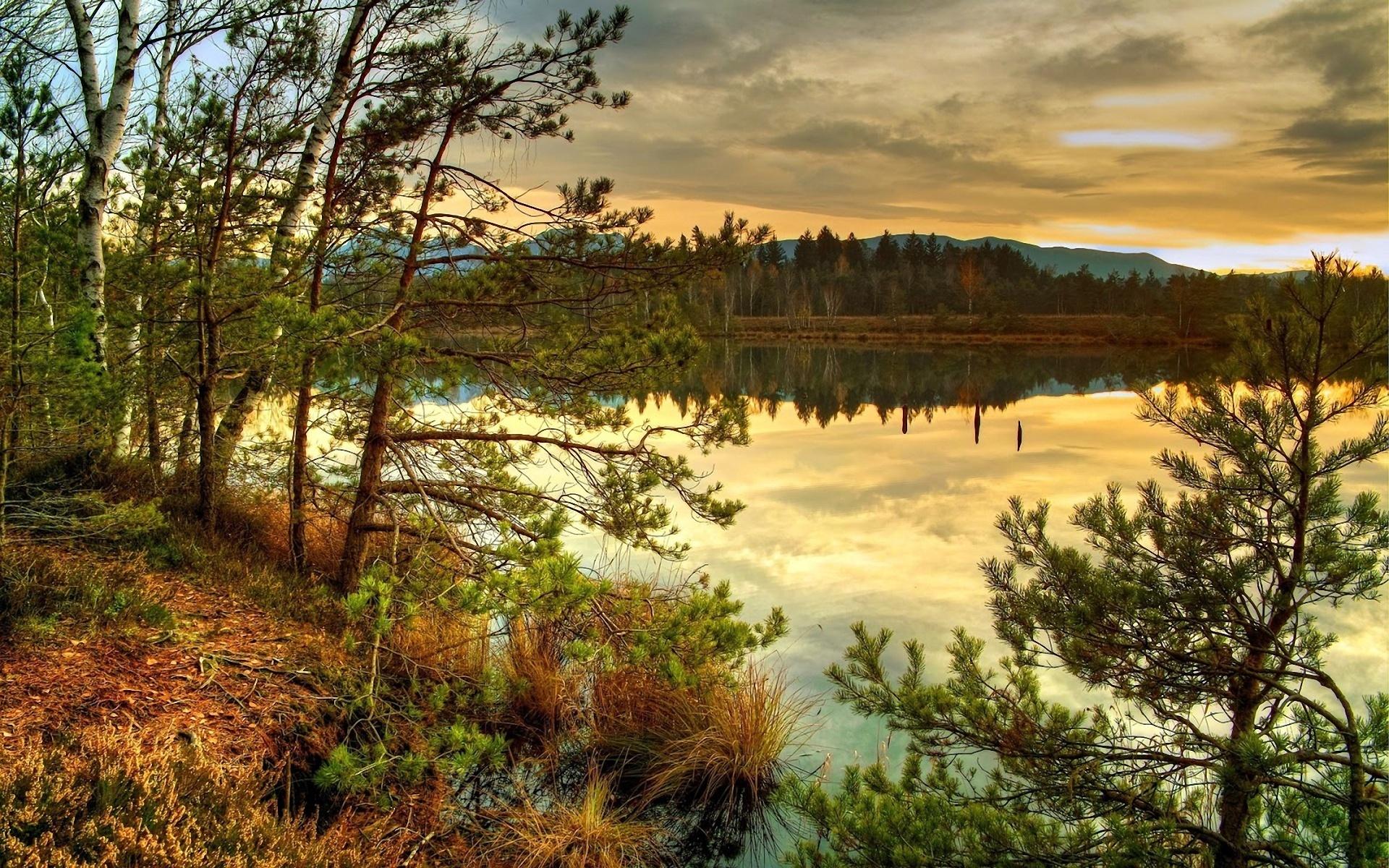 Скачать картинку Закат, Река, Деревья, Пейзаж в телефон бесплатно.