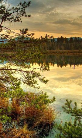 21972 скачать обои Пейзаж, Река, Деревья, Закат - заставки и картинки бесплатно