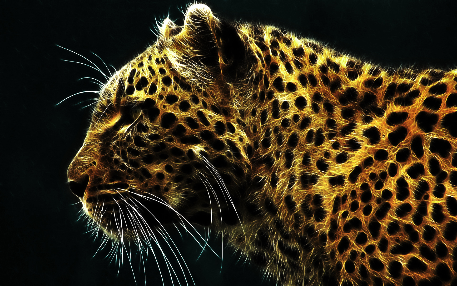 43374 download wallpaper Animals, Tigers screensavers and pictures for free